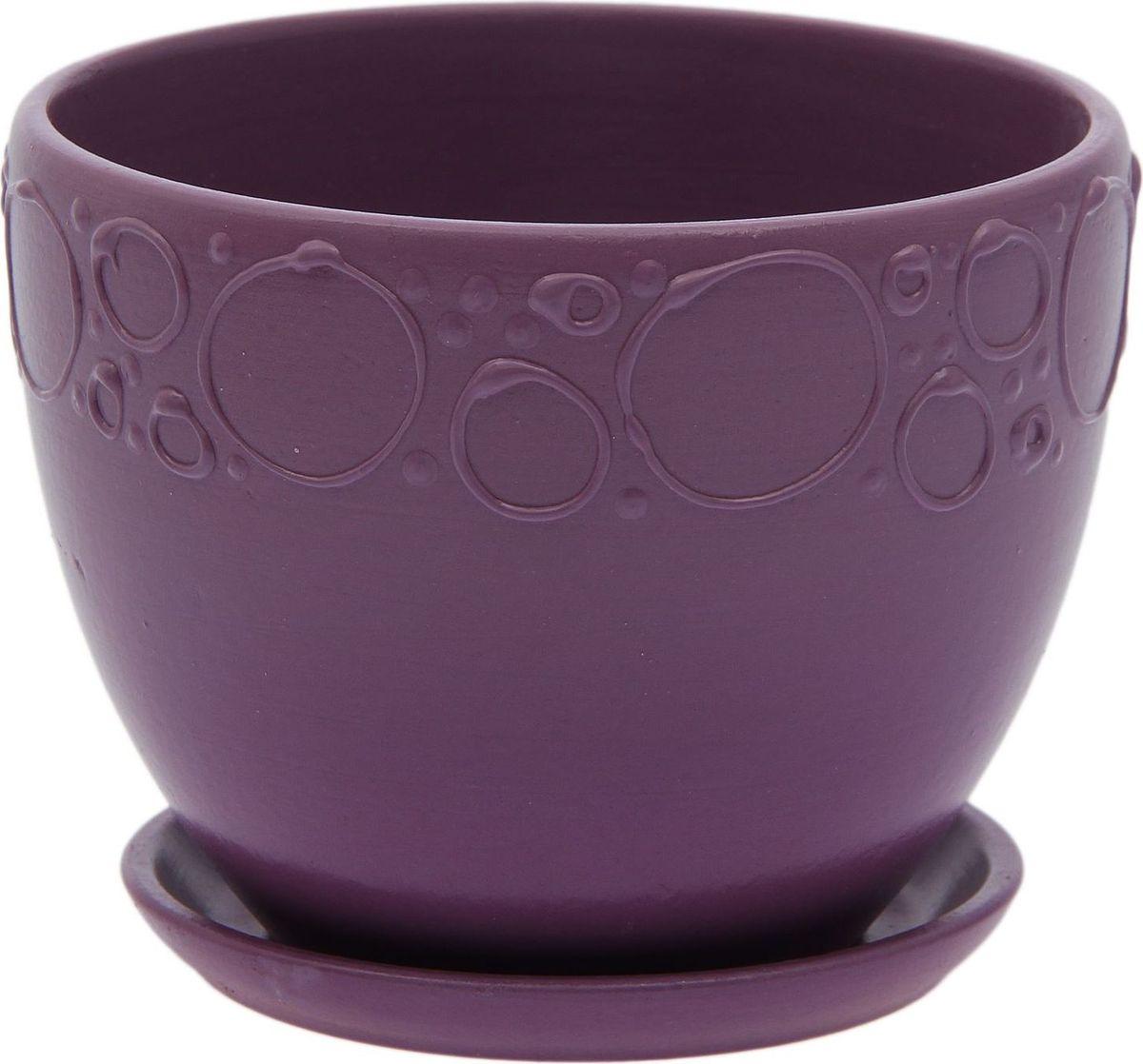 Кашпо Пузыри, цвет: фиолетовый, 0,8 л2015524Комнатные растения — всеобщие любимцы. Они радуют глаз, насыщают помещение кислородом и украшают пространство. Каждому из них необходим свой удобный и красивый дом. Кашпо из керамики прекрасно подходят для высадки растений: за счёт пластичности глины и разных способов обработки существует великое множество форм и дизайновпористый материал позволяет испаряться лишней влагевоздух, необходимый для дыхания корней, проникает сквозь керамические стенки! #name# позаботится о зелёном питомце, освежит интерьер и подчеркнёт его стиль.