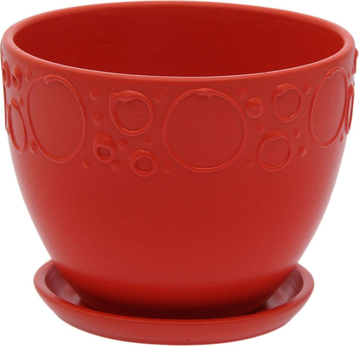 Кашпо Пузыри, цвет: красный, 0,8 л2015526Комнатные растения — всеобщие любимцы. Они радуют глаз, насыщают помещение кислородом и украшают пространство. Каждому из них необходим свой удобный и красивый дом. Кашпо из керамики прекрасно подходят для высадки растений: за счёт пластичности глины и разных способов обработки существует великое множество форм и дизайновпористый материал позволяет испаряться лишней влагевоздух, необходимый для дыхания корней, проникает сквозь керамические стенки! #name# позаботится о зелёном питомце, освежит интерьер и подчеркнёт его стиль.