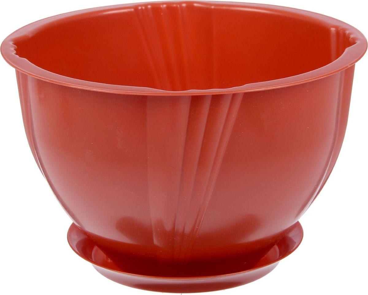 Кашпо Berossi Diana, с поддоном, цвет: терракотовый, 5 л2305364Кашпо — это не просто ёмкость для выращивания комнатных растений, но и важный элемент декора.Посадите растение в Кашпо с поддоном 5 л Diana, цвет терракотовый! Его интересная форма дополнит интерьер, а качественный материал будет радовать вас долгие годы. Пластик полностью безопасен и не вступает в реакцию с почвой и корнями растения. Помимо этого, горшокЛёгкий, что делает удобной его транспортировку и эксплуатацию.Практичный: можно использовать для большинства комнатных растений. Цельный — вам не потребуются дпоолнительные приспособления и элементы.