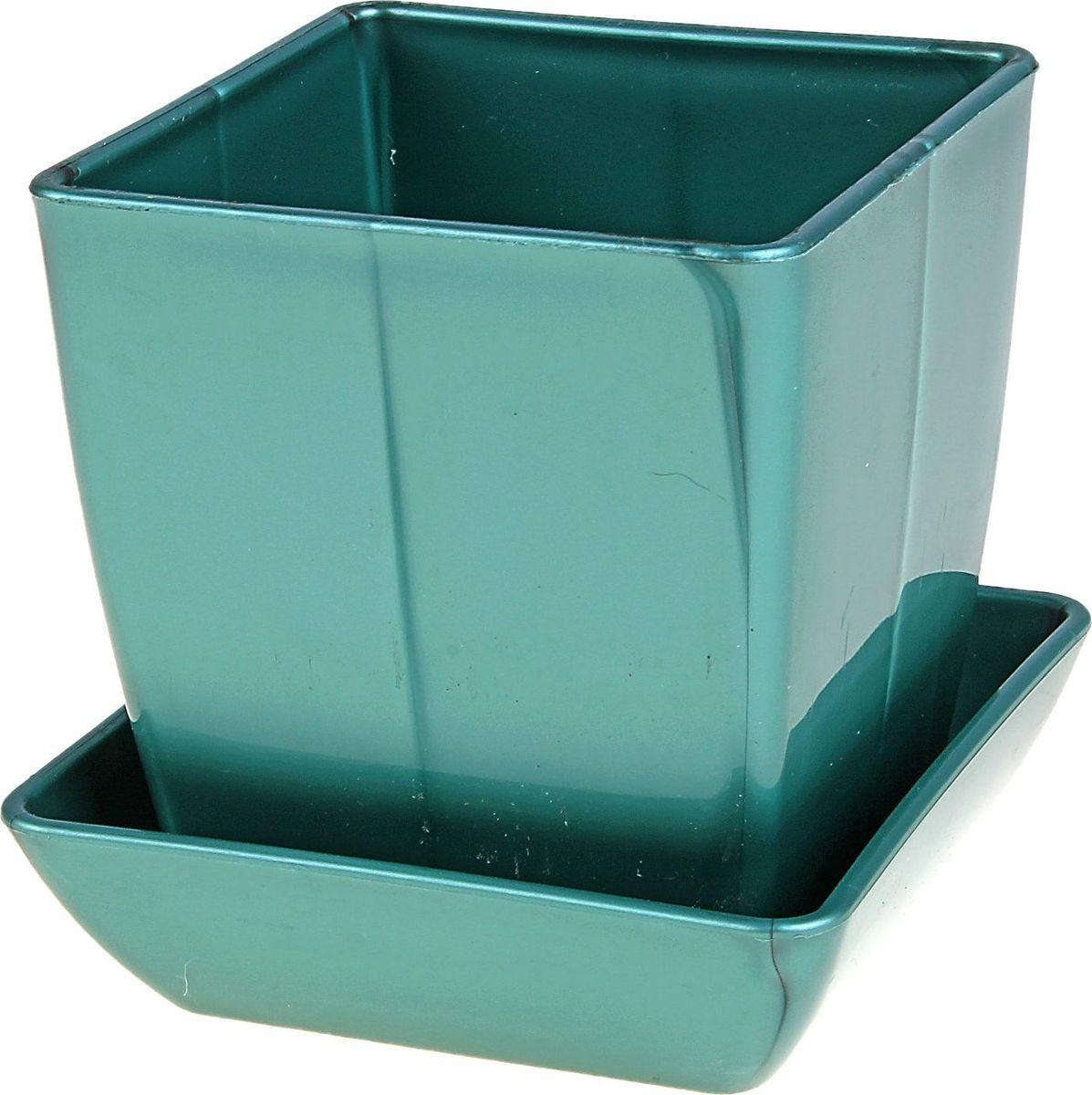 Горшок для цветов Мегапласт Квадрат, с поддоном, цвет: бирюзовый перламутр, 0,3 л624945Любой, даже самый современный и продуманный интерьер будет не завершенным без растений. Они не только очищают воздух и насыщают его кислородом, но и заметно украшают окружающее пространство. Такому полезному члену семьи просто необходимо красивое и функциональное кашпо, оригинальный горшок или необычная ваза! Мы предлагаем - Горшок для цветов с поддоном 7,5х7,5 см Квадрат 300 мл, цвет перламутр, рубин! Оптимальный выбор материала - это пластмасса! Почему мы так считаем? Малый вес. С легкостью переносите горшки и кашпо с места на место, ставьте их на столики или полки, подвешивайте под потолок, не беспокоясь о нагрузке. Простота ухода. Пластиковые изделия не нуждаются в специальных условиях хранения. Их легко чистить достаточно просто сполоснуть теплой водой. Никаких царапин. Пластиковые кашпо не царапают и не загрязняют поверхности, на которых стоят. Пластик дольше хранит влагу, а значит растение реже нуждается в поливе. Пластмасса не пропускает воздух корневой системе растения не грозят резкие перепады температур. Огромный выбор форм, декора и расцветок вы без труда подберете что-то, что идеально впишется в уже существующий интерьер. Соблюдая нехитрые правила ухода, вы можете заметно продлить срок службы горшков, вазонов и кашпо из пластика: всегда учитывайте размер кроны и корневой системы растения (при разрастании большое растение способно повредить маленький горшок) берегите изделие от воздействия прямых солнечных лучей, чтобы кашпо и горшки не выцветали держите кашпо и горшки из пластика подальше от нагревающихся поверхностей. Создавайте прекрасные цветочные композиции, выращивайте рассаду или необычные растения, а низкие цены позволят вам не ограничивать себя в выборе.