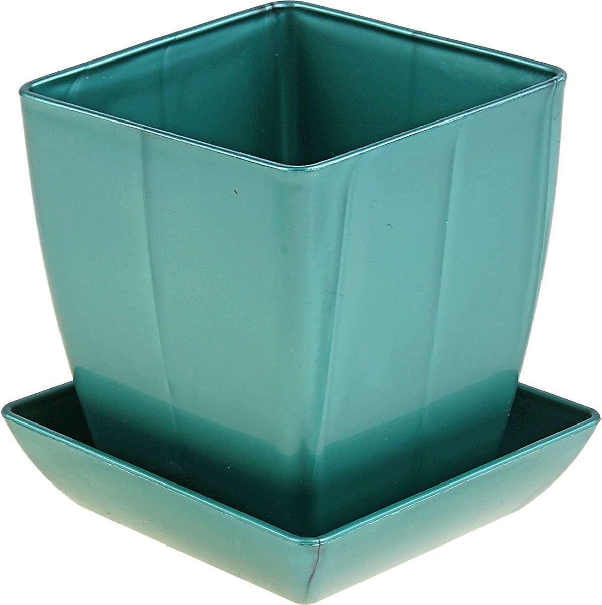 Горшок для цветов Мегапласт Квадрат, с поддоном, цвет: бирюзовый перламутр, 1 л624949Горшок для цветов Мегапласт Квадрат обладает малым весом и высокой прочностью. С лёгкостью переносите горшки и кашпо с места на место, ставьте их на столики или полки, подвешивайте под потолок, не беспокоясь о нагрузке. Пластиковые изделия не нуждаются в специальных условиях хранения. Их легко чистить - достаточно просто сполоснуть тёплой водой. Пластиковые кашпо не царапают и не загрязняют поверхности, на которых стоят. Пластик дольше хранит влагу, а значит растение реже нуждается в поливе.Пластмасса не пропускает воздух, а значит, корневой системе растения не грозят резкие перепады температур. Соблюдая нехитрые правила ухода, вы можете заметно продлить срок службы горшков, вазонов и кашпо из пластика:- всегда учитывайте размер кроны и корневой системы растения (при разрастании большое растение способно повредить маленький горшок). - берегите изделие от воздействия прямых солнечных лучей, чтобы кашпо и горшки не выцветали. - держите кашпо и горшки из пластика подальше от нагревающихся поверхностей. Любой, даже самый современный и продуманный интерьер будет не завершённым без растений. Они не только очищают воздух и насыщают его кислородом, но и заметно украшают окружающее пространство. Такому полезному члену семьи просто необходимо красивое и функциональное кашпо, оригинальный горшок или необычная ваза!