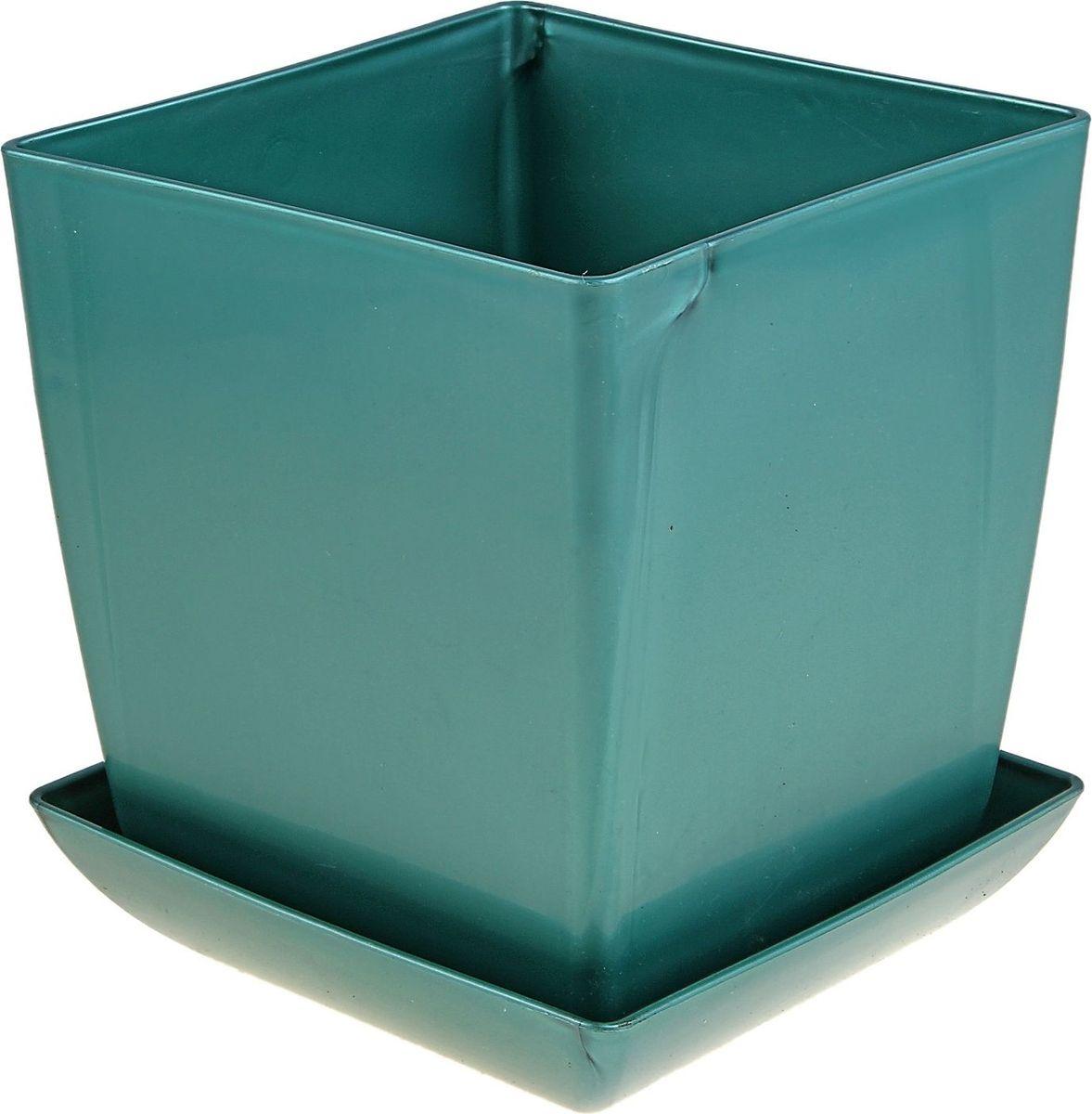 Горшок для цветов Мегапласт Квадрат, с поддоном, цвет: бирюзовый перламутр, 3,5 л624958Горшок для цветов Мегапласт Квадрат обладает малым весом и высокой прочностью. С лёгкостью переносите горшки и кашпо с места на место, ставьте их на столики или полки, подвешивайте под потолок, не беспокоясь о нагрузке. Пластиковые изделия не нуждаются в специальных условиях хранения. Их легко чистить - достаточно просто сполоснуть тёплой водой. Пластиковые кашпо не царапают и не загрязняют поверхности, на которых стоят. Пластик дольше хранит влагу, а значит растение реже нуждается в поливе.Пластмасса не пропускает воздух, а значит, корневой системе растения не грозят резкие перепады температур. Соблюдая нехитрые правила ухода, вы можете заметно продлить срок службы горшков, вазонов и кашпо из пластика:- всегда учитывайте размер кроны и корневой системы растения (при разрастании большое растение способно повредить маленький горшок). - берегите изделие от воздействия прямых солнечных лучей, чтобы кашпо и горшки не выцветали. - держите кашпо и горшки из пластика подальше от нагревающихся поверхностей. Любой, даже самый современный и продуманный интерьер будет не завершённым без растений. Они не только очищают воздух и насыщают его кислородом, но и заметно украшают окружающее пространство. Такому полезному члену семьи просто необходимо красивое и функциональное кашпо, оригинальный горшок или необычная ваза!