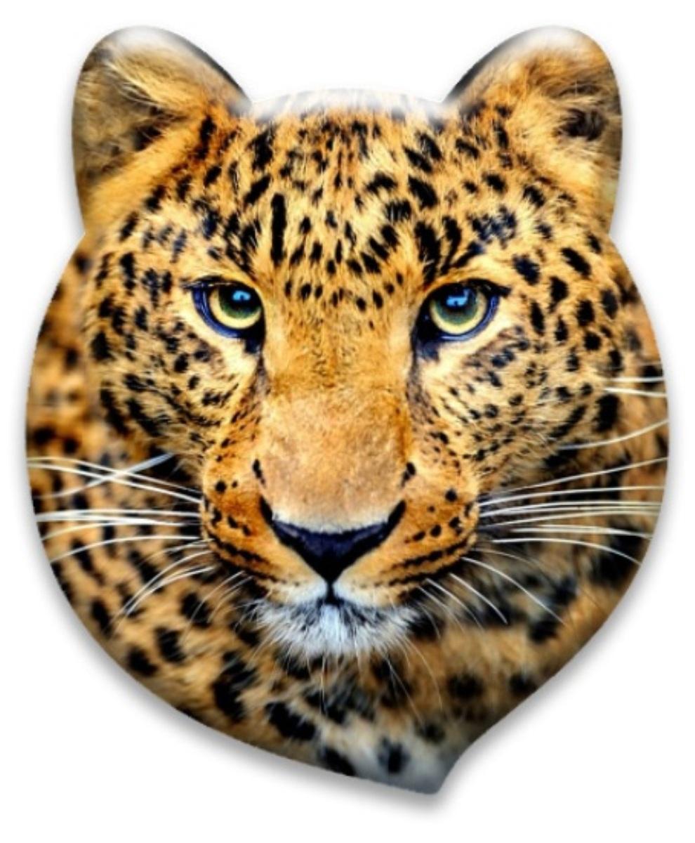 Властелин дорог Значок светоотражающий ЛеопардА461Светоотражающий значок Леопард предназначен для увеличения видимости в темное время суток, при дождливой и пасмурной погоде. Подходит для крепления на одежду, сумку, рюкзак, коляску. Изделие изготовлено из пленки ПВХ светоотражающей. Рисунок нанесен с помощью метода фотопечати.Благодаря оригинальным авторским рисункам известного художника Льва Бартенева, значки приобрели свою неповторимость и уникальность. Диаметр значка: 8 см.