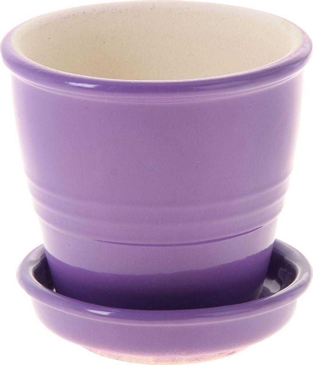 Кашпо Керамика ручной работы Классик, цвет: сиреневый, 0,23 л1019385Декоративное кашпо, выполненное из высококачественной керамики, предназначено для посадки декоративных растений и станет прекрасным украшением для дома. Пористый материал позволяет испаряться лишней влаге, а воздух, необходимый для дыхания корней, проникает сквозь керамические стенки. Такое кашпо украсит окружающее пространство и подчеркнет его оригинальный стиль.