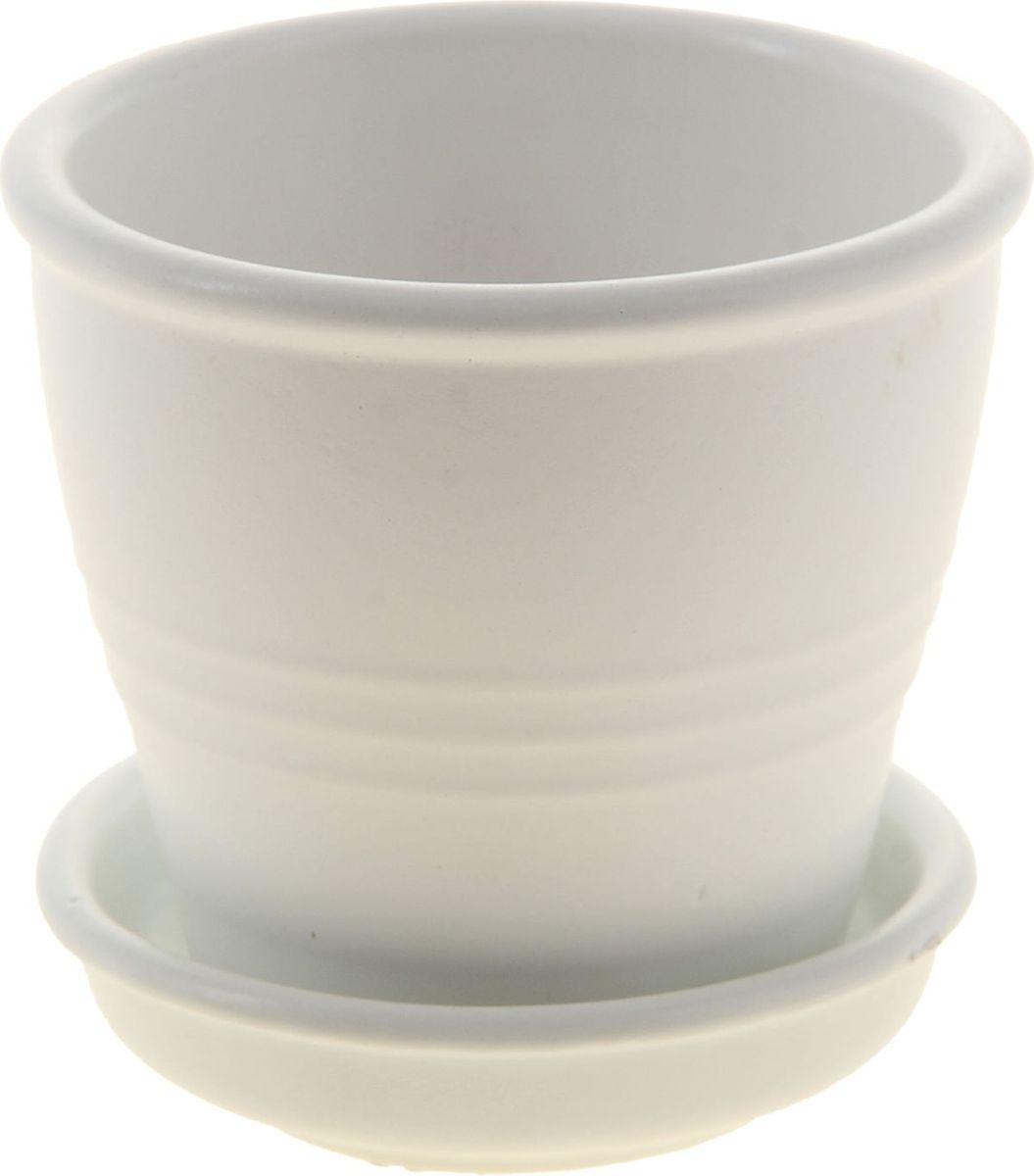 Кашпо Керамика ручной работы Классик, цвет: белый, 0,23 л1019386Комнатные растения — всеобщие любимцы. Они радуют глаз, насыщают помещение кислородом и украшают пространство. Каждому из них необходим свой удобный и красивый дом. Кашпо из керамики прекрасно подходят для высадки растений: за счёт пластичности глины и разных способов обработки существует великое множество форм и дизайновпористый материал позволяет испаряться лишней влагевоздух, необходимый для дыхания корней, проникает сквозь керамические стенки! #name# позаботится о зелёном питомце, освежит интерьер и подчеркнёт его стиль.