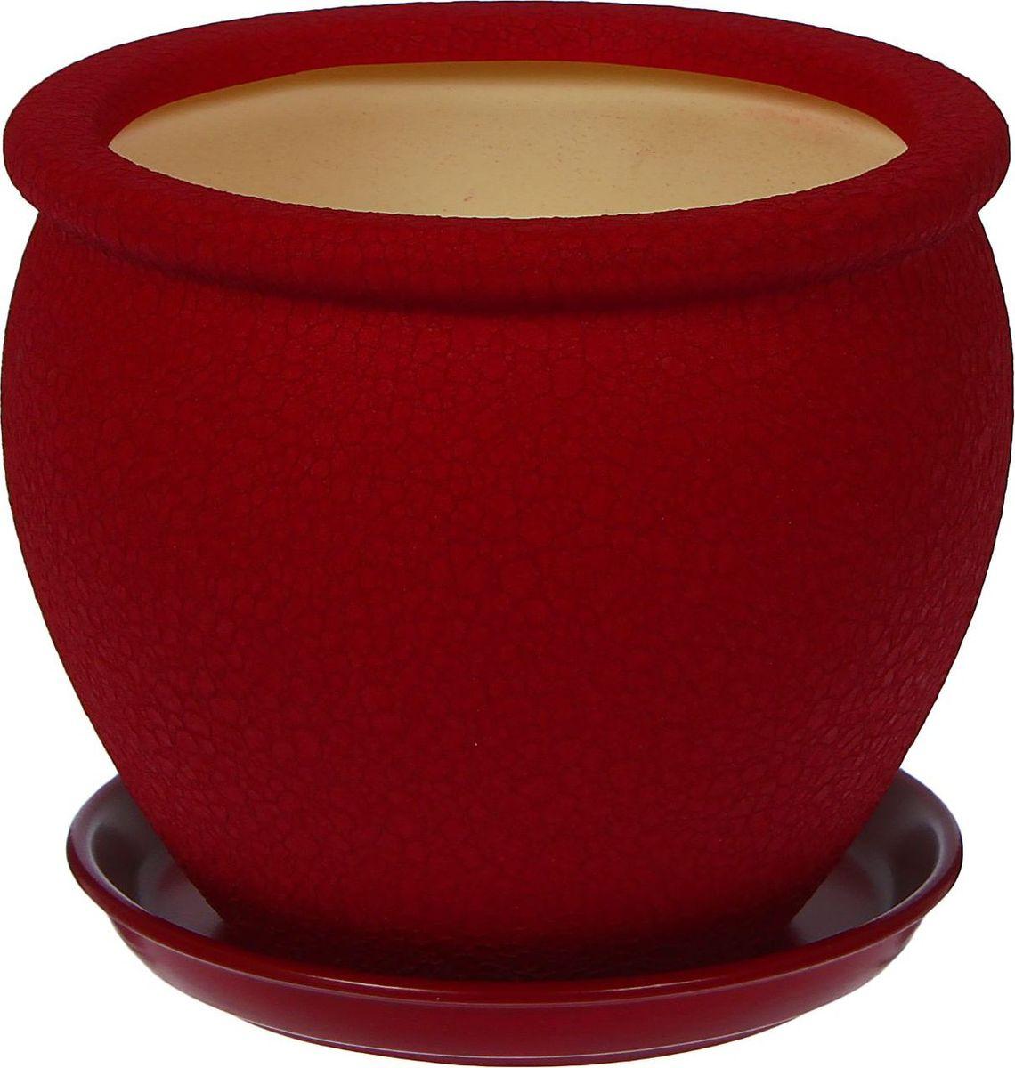 Кашпо Керамика ручной работы Вьетнам, цвет: бордовый, 5 л1019393Декоративное кашпо, выполненное из высококачественной керамики, предназначено для посадки декоративных растений и станет прекрасным украшением для дома. Пористый материал позволяет испаряться лишней влаге, а воздух, необходимый для дыхания корней, проникает сквозь керамические стенки. Такое кашпо украсит окружающее пространство и подчеркнет его оригинальный стиль.