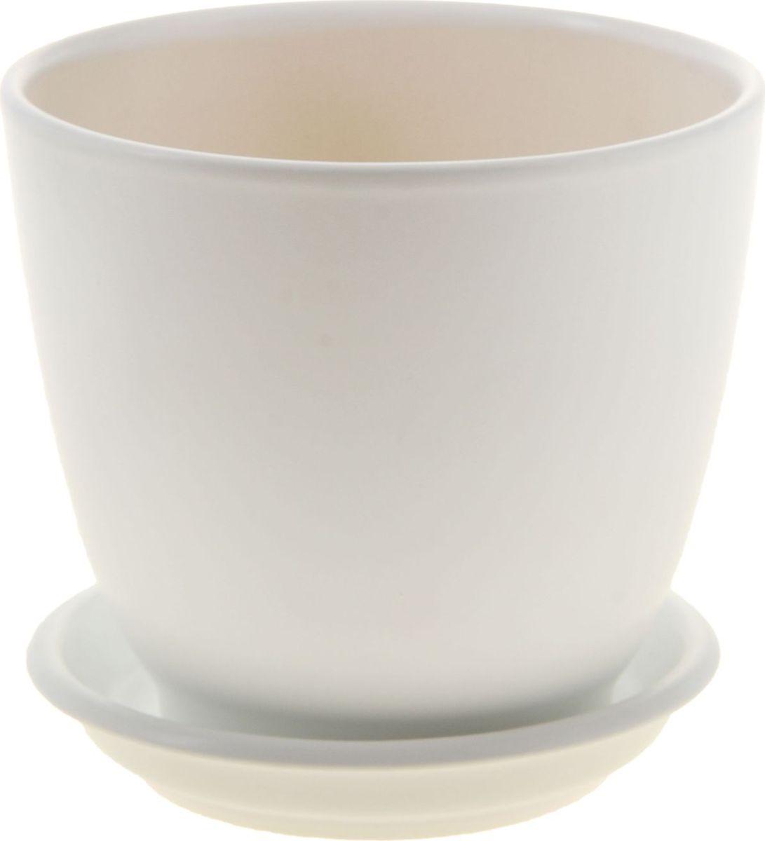 Кашпо Керамика ручной работы Кедр. Глянец, цвет: белый, 1,6 л1019400Комнатные растения - всеобщие любимцы. Они радуют глаз, насыщают помещение кислородом и украшают пространство. Каждому из них необходим свой удобный и красивый дом. Кашпо из керамики прекрасно подходят для высадки растений:пористый материал позволяет испаряться лишней влаге;воздух, необходимый для дыхания корней, проникает сквозь керамические стенки. Кашпо Кедр позаботится о зеленом питомце, освежит интерьер и подчеркнет его стиль.