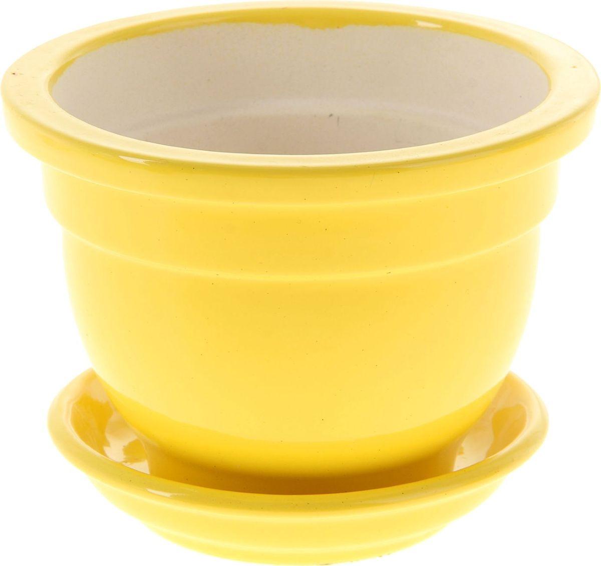 Кашпо Керамика ручной работы Бета, для фиалок, цвет: желтый, 0,5 л1019407Комнатные растения - всеобщие любимцы. Они радуют глаз, насыщают помещение кислородом и украшают пространство. Каждому из них необходим свой удобный и красивый дом. Кашпо из керамики прекрасно подходят для высадки растений: за счет пластичности глины и разных способов обработки существует великое множество форм и дизайнов. Пористый материал позволяет испаряться лишней влаге воздух, необходимый для дыхания корней.