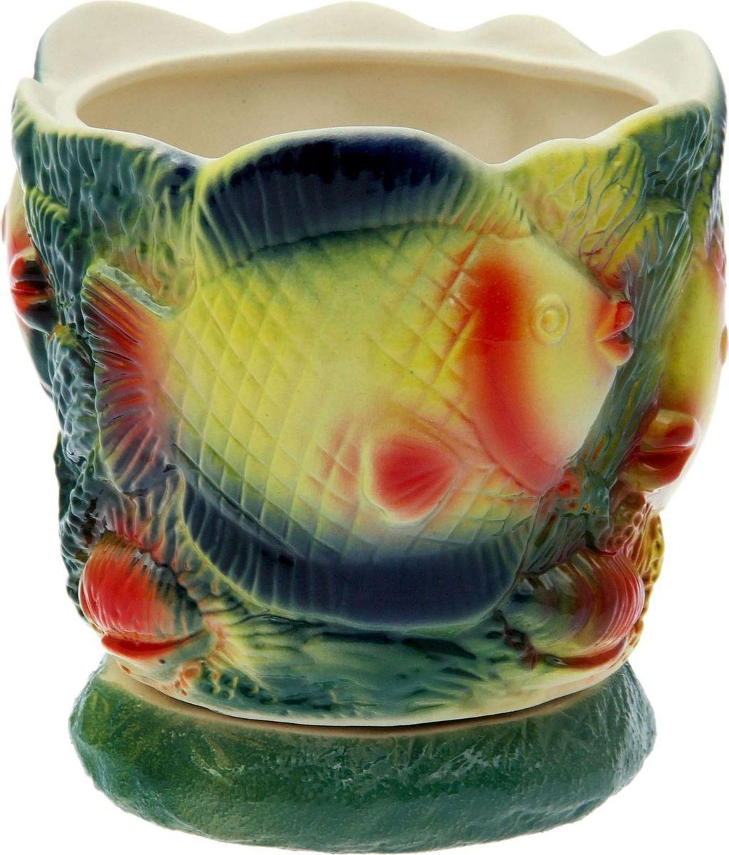 Кашпо Керамика ручной работы С рыбкой, 2 л1086201Комнатные растения — всеобщие любимцы. Они радуют глаз, насыщают помещение кислородом и украшают пространство. Каждому из растений необходим свой удобный и красивый дом. Поселите зелёного питомца в яркое и оригинальное фигурное кашпо. Выберите подходящую форму для детской, спальни, гостиной, балкона, офиса или террасы. #name# позаботится о растении, украсит окружающее пространство и подчеркнёт его оригинальный стиль.