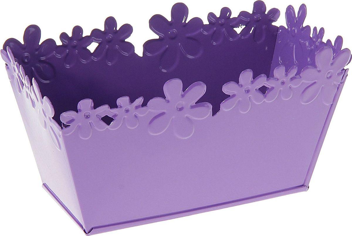 Кашпо Цветочный край. Ванночка, цвет: фиолетовый, 1 л139737Комнатные растения — всеобщие любимцы. Они радуют глаз, насыщают помещение кислородом и украшают пространство. Каждому из растений необходим свой удобный и красивый дом. Металлические декоративные вазы для горшков практичны и долговечны. позаботится о зеленом питомце, освежит интерьер и подчеркнет его стиль. Особенно выигрышно они смотрятся в экстерьере: на террасах и в беседках. При желании его всегда можно перекрасить в другой цвет.