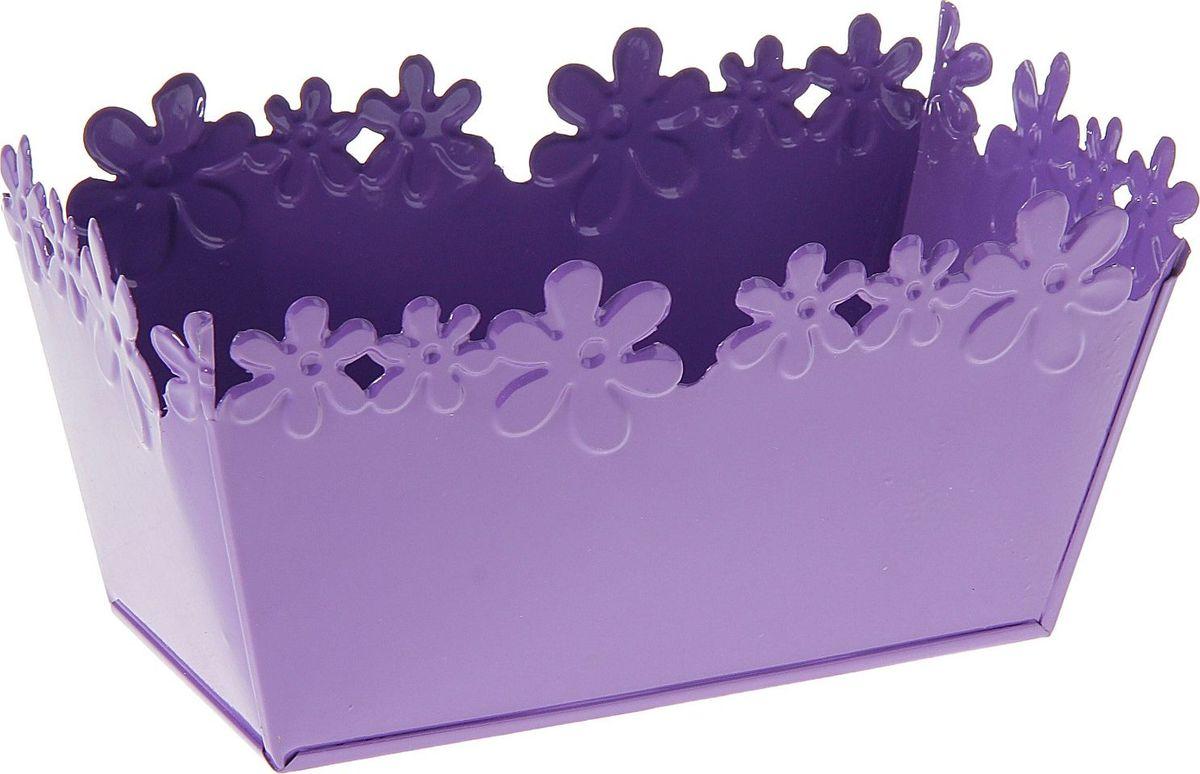 Кашпо Цветочный край. Ванночка, цвет: фиолетовый, 1-2 л139740Комнатные растения — всеобщие любимцы. Они радуют глаз, насыщают помещение кислородом и украшают пространство. Каждому из растений необходим свой удобный и красивый дом. Металлические декоративные вазы для горшков практичны и долговечны. позаботится о зеленом питомце, освежит интерьер и подчеркнет его стиль. Особенно выигрышно они смотрятся в экстерьере: на террасах и в беседках. При желании его всегда можно перекрасить в другой цвет.