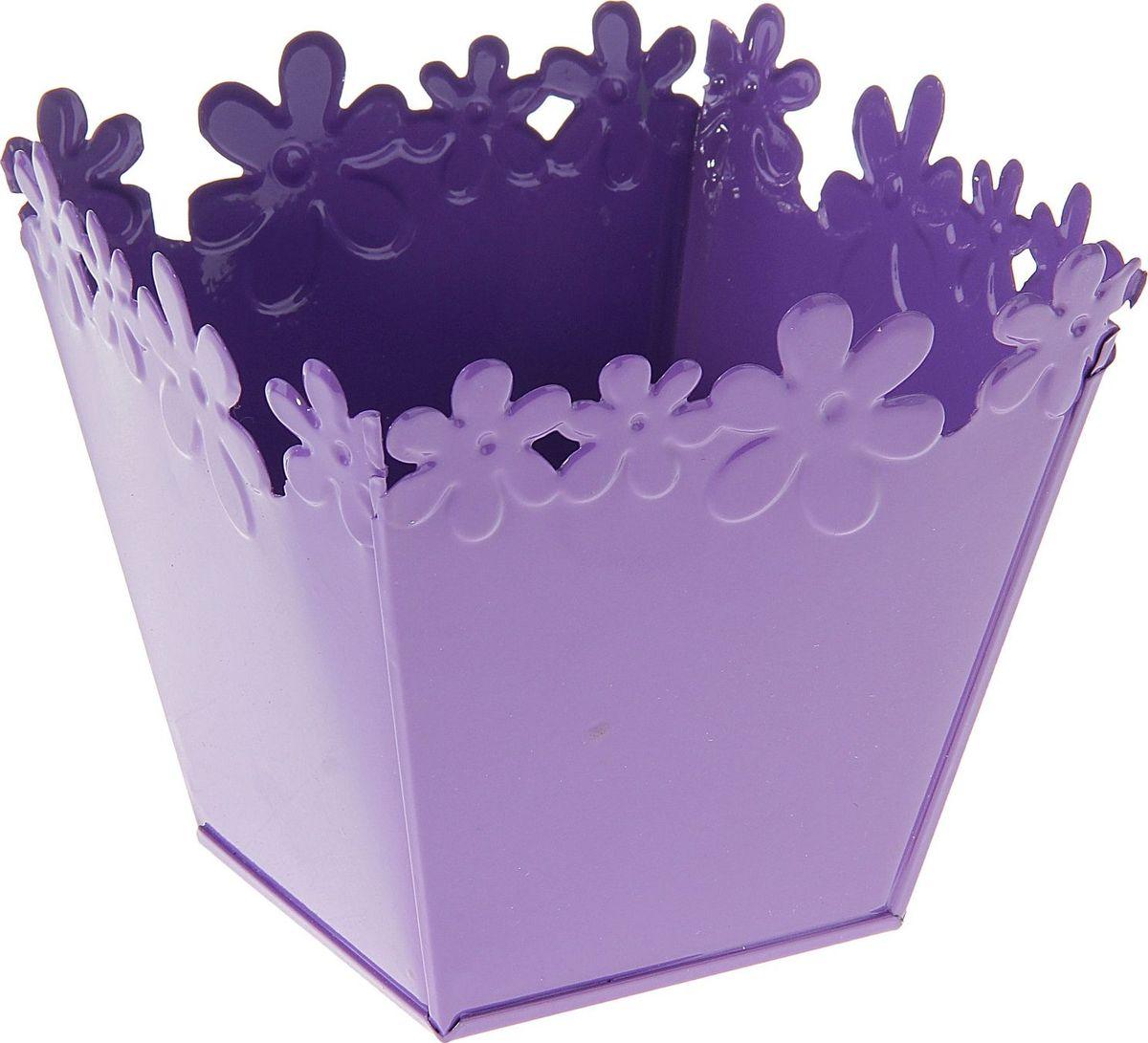 Кашпо Цветочный край. Квадрат, цвет: фиолетовый, 1 л139746Комнатные растения — всеобщие любимцы. Они радуют глаз, насыщают помещение кислородом и украшают пространство. Каждому из растений необходим свой удобный и красивый дом. Металлические декоративные вазы для горшков практичны и долговечны. #name# позаботится о зелёном питомце, освежит интерьер и подчеркнёт его стиль. Особенно выигрышно они смотрятся в экстерьере: на террасах и в беседках. При желании его всегда можно перекрасить в другой цвет.