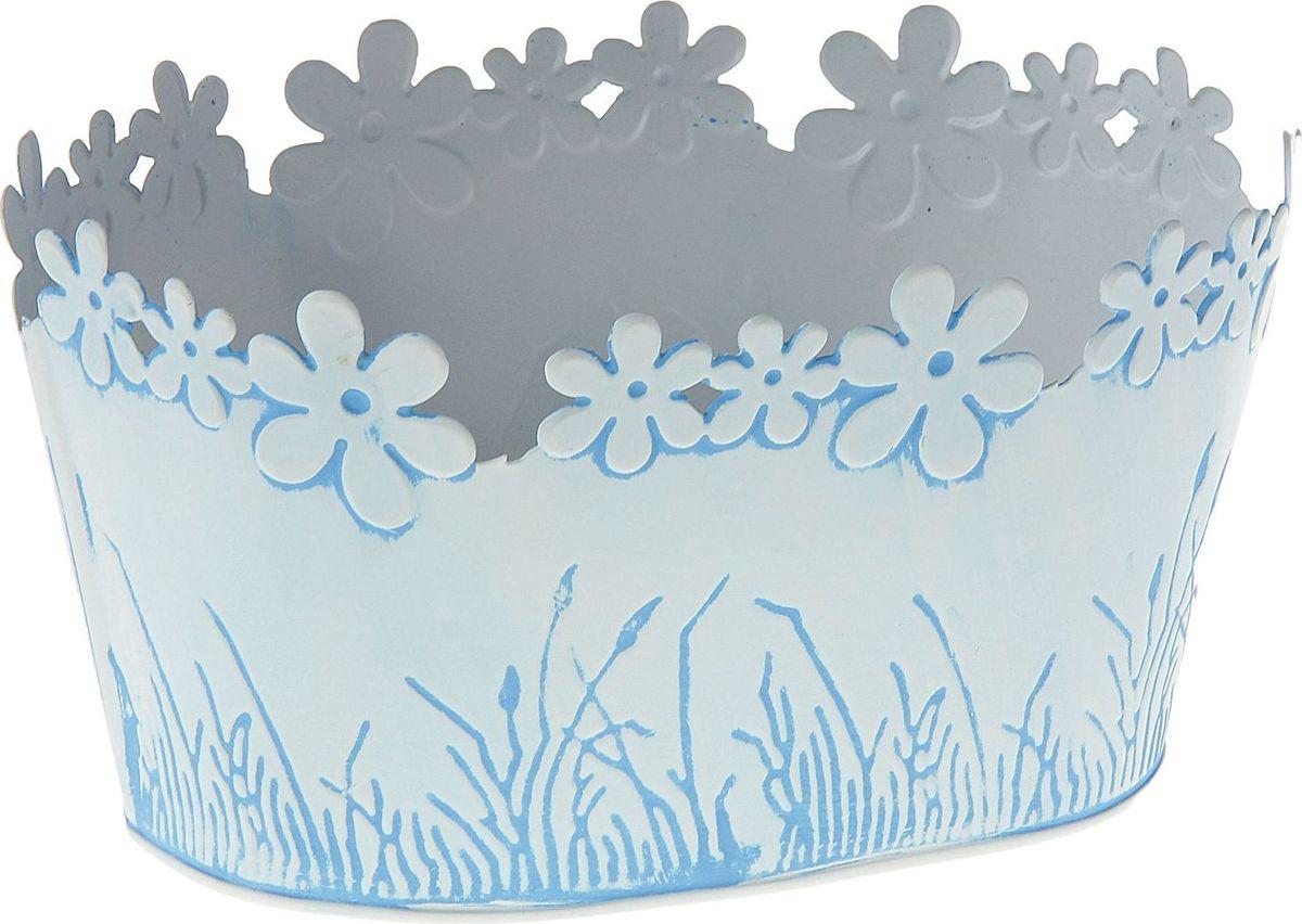 Кашпо Цветочный край. Овал, цвет: голубой, 1-2 л139749Комнатные растения — всеобщие любимцы. Они радуют глаз, насыщают помещение кислородом и украшают пространство. Каждому из растений необходим свой удобный и красивый дом. Металлические декоративные вазы для горшков практичны и долговечны. #name# позаботится о зелёном питомце, освежит интерьер и подчеркнёт его стиль. Особенно выигрышно они смотрятся в экстерьере: на террасах и в беседках. При желании его всегда можно перекрасить в другой цвет.