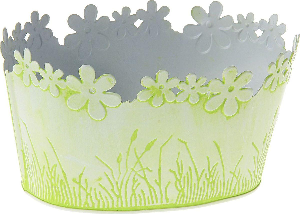 Кашпо Цветочный край. Круг, цвет: белый, зеленый, 1-2 л139750Комнатные растения — всеобщие любимцы. Они радуют глаз, насыщают помещение кислородом и украшают пространство. Каждому из растений необходим свой удобный и красивый дом. Металлические декоративные вазы для горшков практичны и долговечны. #name# позаботится о зелёном питомце, освежит интерьер и подчеркнёт его стиль. Особенно выигрышно они смотрятся в экстерьере: на террасах и в беседках. При желании его всегда можно перекрасить в другой цвет.