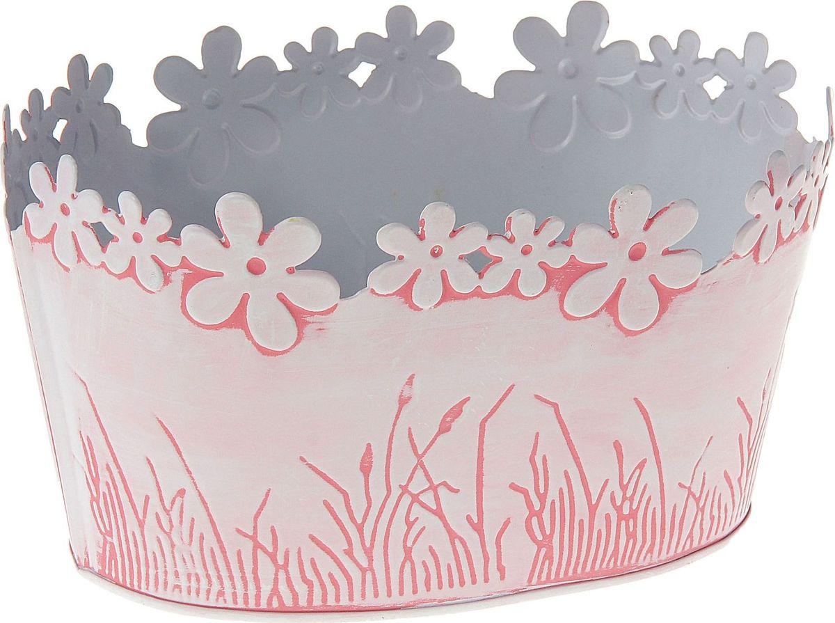 Кашпо Цветочный край. Овал, цвет: розовый, 1 л139751Комнатные растения — всеобщие любимцы. Они радуют глаз, насыщают помещение кислородом и украшают пространство. Каждому из растений необходим свой удобный и красивый дом. Металлические декоративные вазы для горшков практичны и долговечны. #name# позаботится о зелёном питомце, освежит интерьер и подчеркнёт его стиль. Особенно выигрышно они смотрятся в экстерьере: на террасах и в беседках. При желании его всегда можно перекрасить в другой цвет.