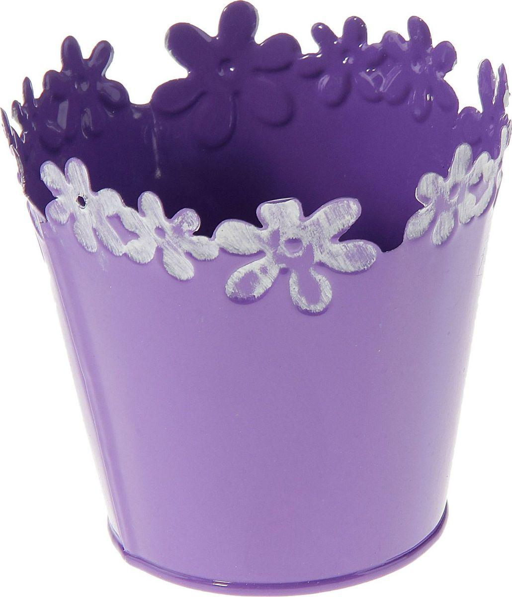 Кашпо Цветочный край. Круг, цвет: фиолетовый, 1 л139752Комнатные растения — всеобщие любимцы. Они радуют глаз, насыщают помещение кислородом и украшают пространство. Каждому из растений необходим свой удобный и красивый дом. Металлические декоративные вазы для горшков практичны и долговечны. #name# позаботится о зелёном питомце, освежит интерьер и подчеркнёт его стиль. Особенно выигрышно они смотрятся в экстерьере: на террасах и в беседках. При желании его всегда можно перекрасить в другой цвет.