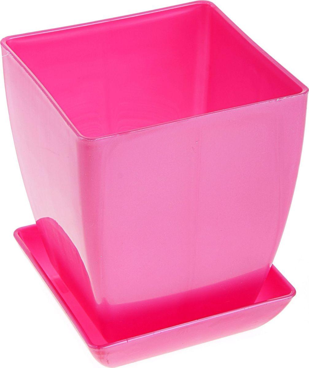 Горшок для цветов Мегапласт Квадрат, с поддоном, цвет: рубиновый перламутр, 1 л166498Горшок для цветов Мегапласт Квадрат обладает малым весом и высокой прочностью. С лёгкостью переносите горшки и кашпо с места на место, ставьте их на столики или полки, подвешивайте под потолок, не беспокоясь о нагрузке. Пластиковые изделия не нуждаются в специальных условиях хранения. Их легко чистить - достаточно просто сполоснуть тёплой водой. Пластиковые кашпо не царапают и не загрязняют поверхности, на которых стоят. Пластик дольше хранит влагу, а значит растение реже нуждается в поливе.Пластмасса не пропускает воздух, а значит, корневой системе растения не грозят резкие перепады температур. Соблюдая нехитрые правила ухода, вы можете заметно продлить срок службы горшков, вазонов и кашпо из пластика:- всегда учитывайте размер кроны и корневой системы растения (при разрастании большое растение способно повредить маленький горшок). - берегите изделие от воздействия прямых солнечных лучей, чтобы кашпо и горшки не выцветали. - держите кашпо и горшки из пластика подальше от нагревающихся поверхностей. Любой, даже самый современный и продуманный интерьер будет не завершённым без растений. Они не только очищают воздух и насыщают его кислородом, но и заметно украшают окружающее пространство. Такому полезному члену семьи просто необходимо красивое и функциональное кашпо, оригинальный горшок или необычная ваза!