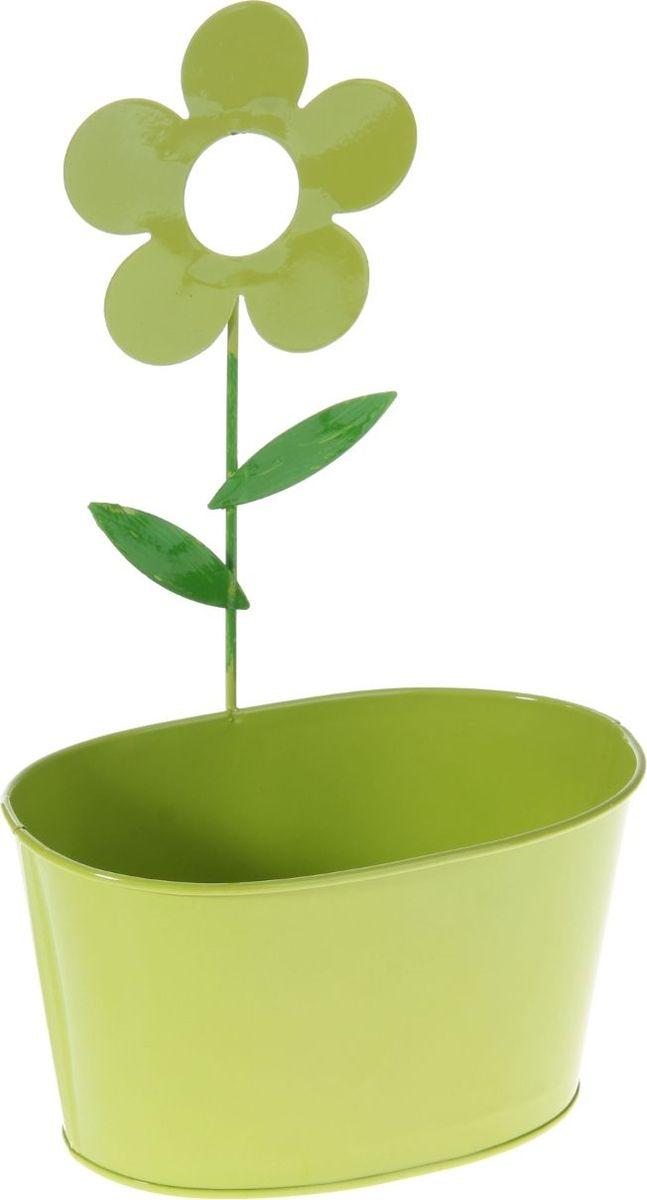 Кашпо Цветок, настенное, цвет: салатовый, 16,5 х 27,5 х 10 см232854Комнатные растения — всеобщие любимцы. Они радуют глаз, насыщают помещение кислородом и украшают пространство. Каждому из растений необходим свой удобный и красивый дом. Металлические декоративные вазы для горшков практичны и долговечны. #name# позаботится о зелёном питомце, освежит интерьер и подчеркнёт его стиль. Особенно выигрышно они смотрятся в экстерьере: на террасах и в беседках. При желании его всегда можно перекрасить в другой цвет.