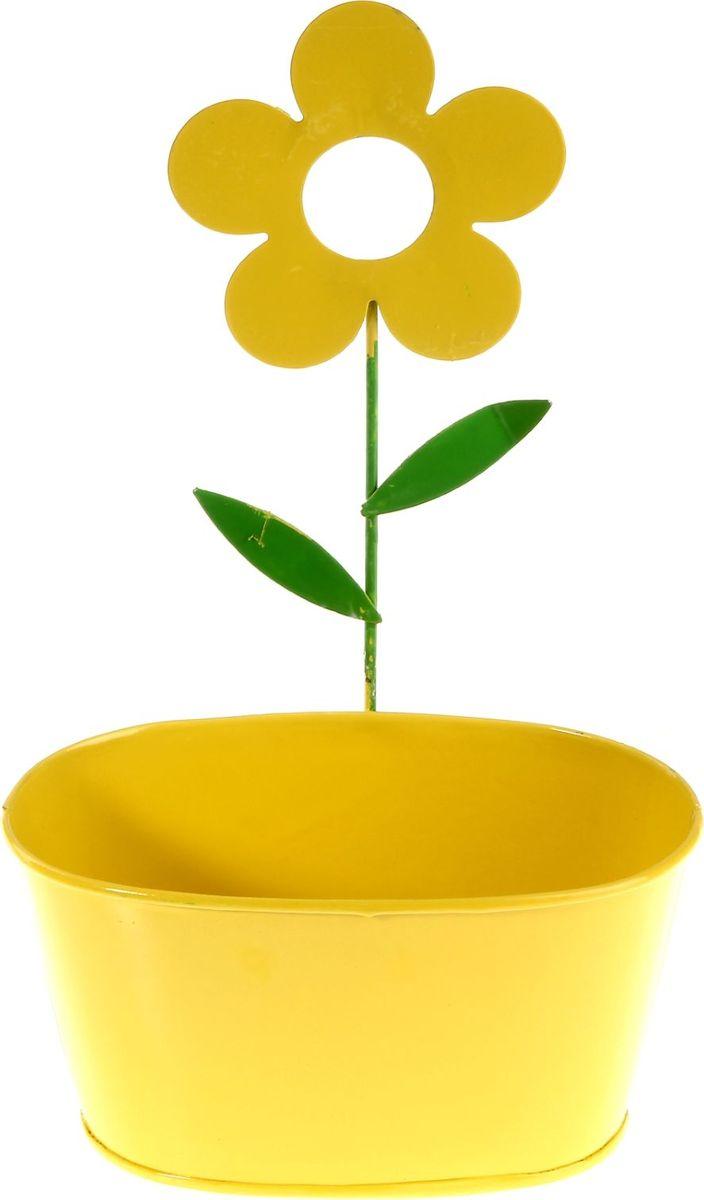 Кашпо Цветок, настенное, цвет: желтый, 16,5 х 27,5 х 10 см232856Комнатные растения — всеобщие любимцы. Они радуют глаз, насыщают помещение кислородом и украшают пространство. Каждому из растений необходим свой удобный и красивый дом. Металлические декоративные вазы для горшков практичны и долговечны. #name# позаботится о зелёном питомце, освежит интерьер и подчеркнёт его стиль. Особенно выигрышно они смотрятся в экстерьере: на террасах и в беседках. При желании его всегда можно перекрасить в другой цвет.