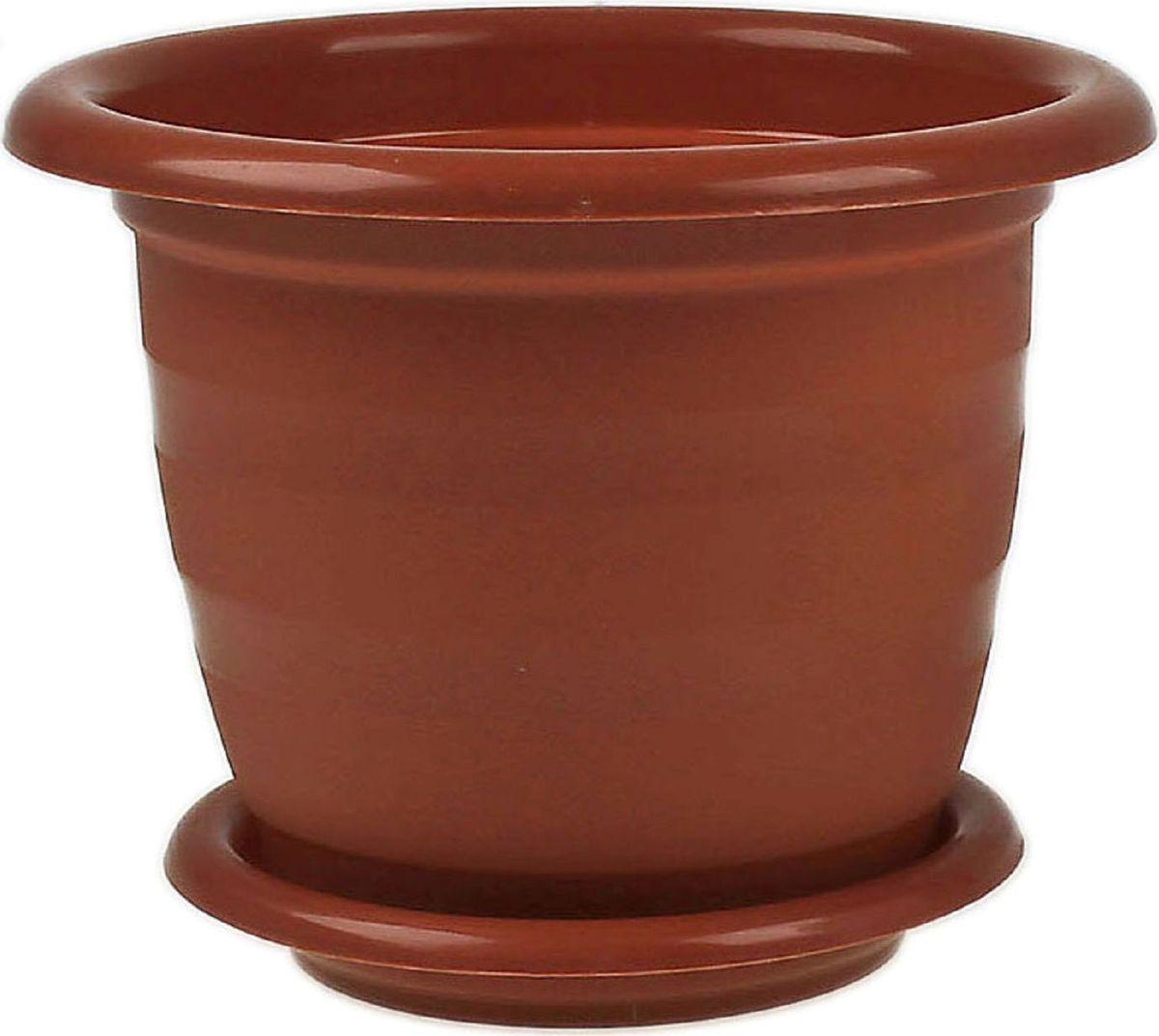 Горшок для цветов Альтернатива Виола, с поддоном, цвет: коричневый, 5 л608322Любой, даже самый современный и продуманный интерьер будет не завершенным без растений. Они не только очищают воздух и насыщают его кислородом, но и заметно украшают окружающее пространство. Такому полезному члену семьи просто необходимо красивое и функциональное кашпо, оригинальный горшок или необычная ваза! Мы предлагаем - Горшок для цветов 5 л Виола, поддон, цвет коричневый! Оптимальный выбор материала - это пластмасса! Почему мы так считаем? Малый вес. С легкостью переносите горшки и кашпо с места на место, ставьте их на столики или полки, подвешивайте под потолок, не беспокоясь о нагрузке. Простота ухода. Пластиковые изделия не нуждаются в специальных условиях хранения. Их легко чистить достаточно просто сполоснуть теплой водой. Никаких царапин. Пластиковые кашпо не царапают и не загрязняют поверхности, на которых стоят. Пластик дольше хранит влагу, а значит растение реже нуждается в поливе. Пластмасса не пропускает воздух корневой системе растения не грозят резкие перепады температур. Огромный выбор форм, декора и расцветок вы без труда подберете что-то, что идеально впишется в уже существующий интерьер. Соблюдая нехитрые правила ухода, вы можете заметно продлить срок службы горшков, вазонов и кашпо из пластика: всегда учитывайте размер кроны и корневой системы растения (при разрастании большое растение способно повредить маленький горшок) берегите изделие от воздействия прямых солнечных лучей, чтобы кашпо и горшки не выцветали держите кашпо и горшки из пластика подальше от нагревающихся поверхностей. Создавайте прекрасные цветочные композиции, выращивайте рассаду или необычные растения, а низкие цены позволят вам не ограничивать себя в выборе.