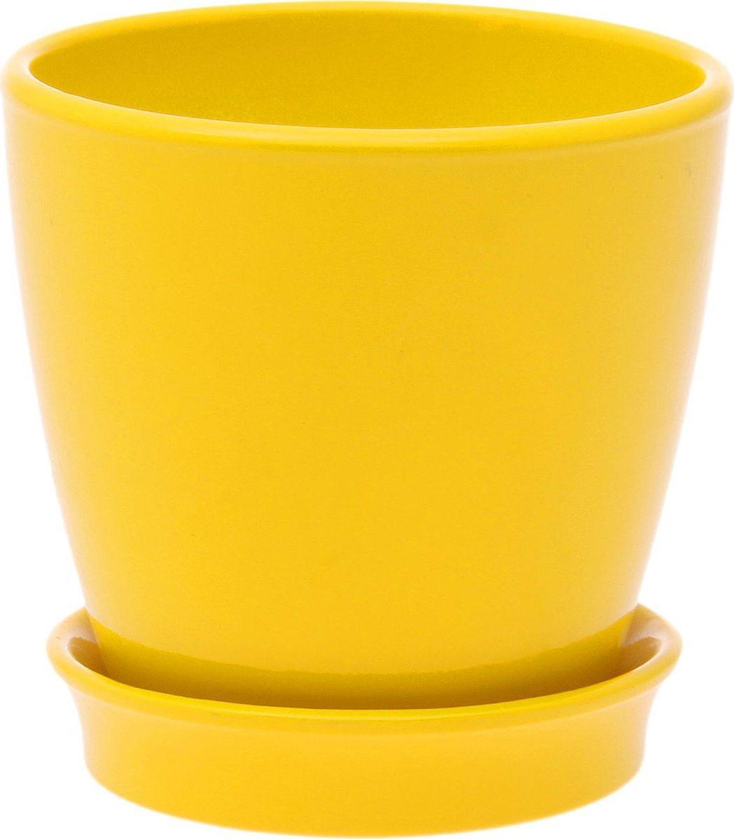 Кашпо Керамика ручной работы Виктория, цвет: желтый, 0,6 л825102Кашпо серии «Каменный цветок» выполнено из белой глины методом формовки и покрыто лаком. Керамическая ёмкость имеет объём, оптимальный для создания наилучших условий развития большинства растений.Устойчивый глубокий поддон защитит поверхность стола или подставки от жидкости.Благодаря строгим стандартам производства изделия отличаются правильной формой, отсутствием дефектов, имеют достаточную тяжесть для надёжной фиксации конструкции.Окраска моделей не восприимчива к прямым солнечным лучам, а в цветовой гамме преобладают яркие и насыщенные оттенки.Красота, удобство и долговечность кашпо серии «Каменный цветок» порадует любителей высококачественных аксессуаров для комнатных растений.