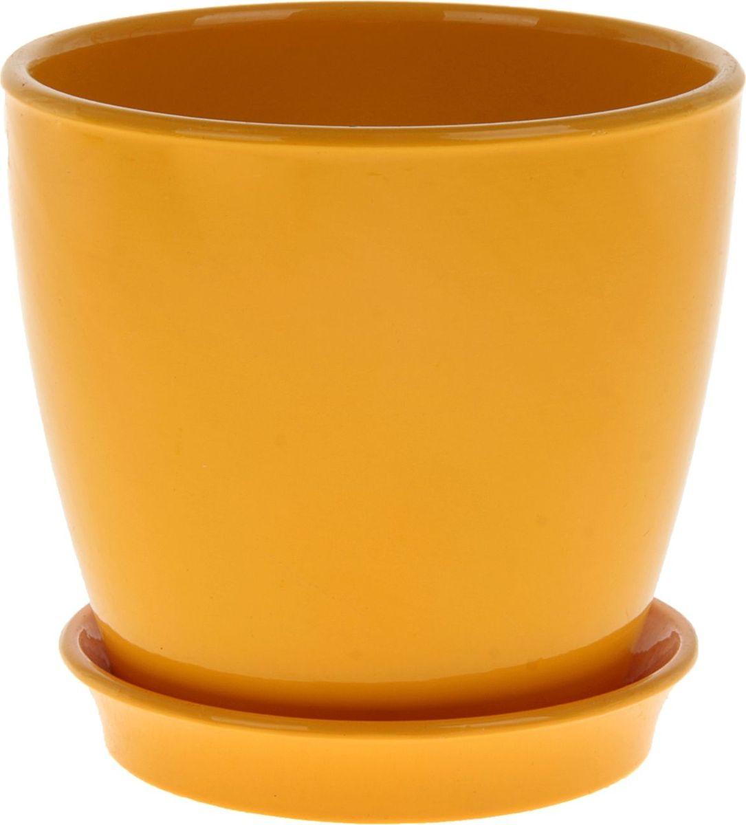 Кашпо Керамика ручной работы Виктория, цвет: желтый, 1 л825110Кашпо серии «Каменный цветок» выполнено из белой глины методом формовки и покрыто лаком. Керамическая ёмкость имеет объём, оптимальный для создания наилучших условий развития большинства растений.Устойчивый глубокий поддон защитит поверхность стола или подставки от жидкости.Благодаря строгим стандартам производства изделия отличаются правильной формой, отсутствием дефектов, имеют достаточную тяжесть для надёжной фиксации конструкции.Окраска моделей не восприимчива к прямым солнечным лучам, а в цветовой гамме преобладают яркие и насыщенные оттенки.Красота, удобство и долговечность кашпо серии «Каменный цветок» порадует любителей высококачественных аксессуаров для комнатных растений.