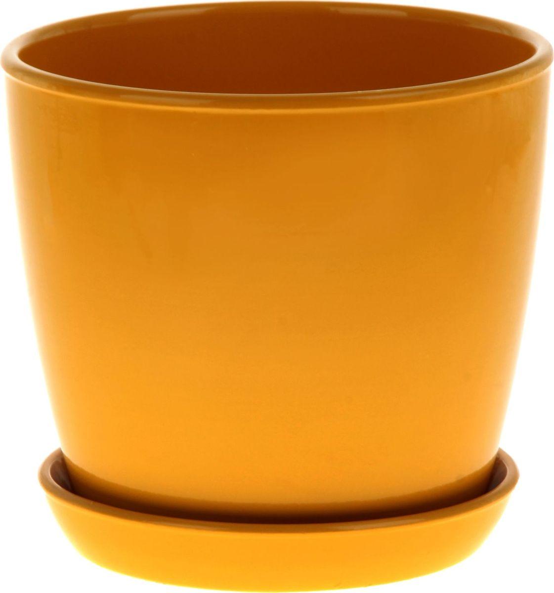Кашпо Керамика ручной работы Виктория, цвет: желтый, 4 л825131Кашпо серии «Каменный цветок» выполнено из белой глины методом формовки и покрыто лаком. Керамическая ёмкость имеет объём, оптимальный для создания наилучших условий развития большинства растений.Устойчивый глубокий поддон защитит поверхность стола или подставки от жидкости.Благодаря строгим стандартам производства изделия отличаются правильной формой, отсутствием дефектов, имеют достаточную тяжесть для надёжной фиксации конструкции.Окраска моделей не восприимчива к прямым солнечным лучам, а в цветовой гамме преобладают яркие и насыщенные оттенки.Красота, удобство и долговечность кашпо серии «Каменный цветок» порадует любителей высококачественных аксессуаров для комнатных растений.