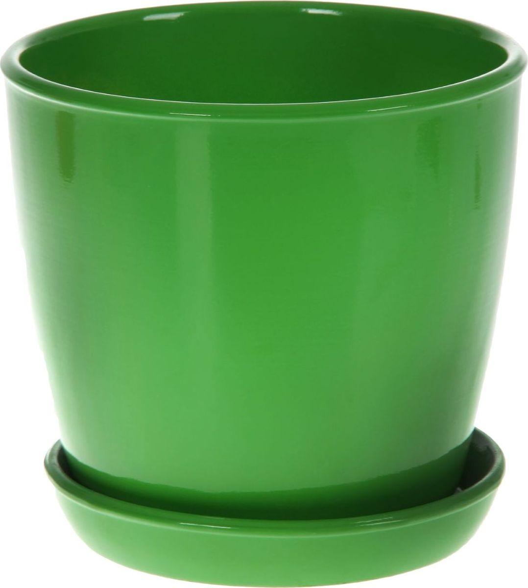 Кашпо Керамика ручной работы Виктория, цвет: зеленый, 4 л825132Кашпо серии «Каменный цветок» выполнено из белой глины методом формовки и покрыто лаком. Керамическая емкость имеет объем, оптимальный для создания наилучших условий развития большинства растений. Устойчивый глубокий поддон защитит поверхность стола или подставки от жидкости. Благодаря строгим стандартам производства изделия отличаются правильной формой, отсутствием дефектов, имеют достаточную тяжесть для надежной фиксации конструкции. Окраска моделей не восприимчива к прямым солнечным лучам, а в цветовой гамме преобладают яркие и насыщенные оттенки. Красота, удобство и долговечность кашпо серии «Каменный цветок» порадует любителей высококачественных аксессуаров для комнатных растений.