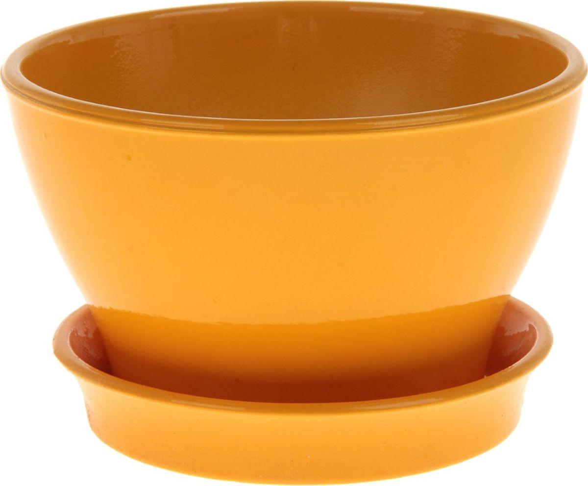 Кашпо Керамика ручной работы Ксения. Глянец, цвет: желтый, 0,5 л825163Декоративное кашпо, выполненное из высококачественной керамики, предназначено для посадки декоративных растений и станет прекрасным украшением для дома. Пористый материал позволяет испаряться лишней влаге, а воздух, необходимый для дыхания корней, проникает сквозь керамические стенки. Такое кашпо украсит окружающее пространство и подчеркнет его оригинальный стиль.