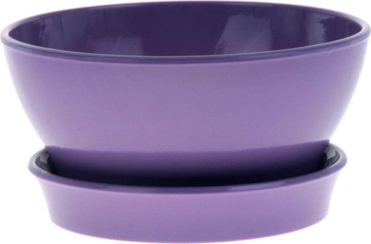 Кашпо Керамика ручной работы Ксения. Глянец, для фиалок, цвет: сиреневый, 1,4 л825177Кашпо серии «Каменный цветок» выполнено из белой глины методом формовки и покрыто лаком. Керамическая ёмкость имеет объём, оптимальный для создания наилучших условий развития фиалок.Устойчивый глубокий поддон защитит поверхность стола или подставки от жидкости.Благодаря строгим стандартам производства изделия отличаются правильной формой, отсутствием дефектов, имеют достаточную тяжесть для надёжной фиксации конструкции.Окраска моделей не восприимчива к прямым солнечным лучам, а в цветовой гамме преобладают яркие и насыщенные оттенки.Красота, удобство и долговечность кашпо серии «Каменный цветок» порадует любителей высококачественных аксессуаров для комнатных растений.