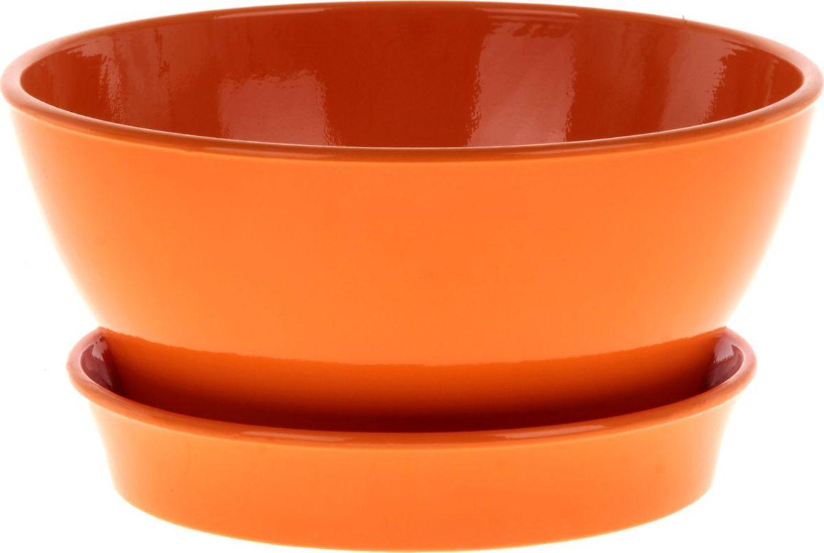 Кашпо Керамика ручной работы Ксения. Глянец, для фиалок, цвет: оранжевый, 1,4 л825182Кашпо серии «Каменный цветок» выполнено из белой глины методом формовки и покрыто лаком. Керамическая ёмкость имеет объём, оптимальный для создания наилучших условий развития фиалок.Устойчивый глубокий поддон защитит поверхность стола или подставки от жидкости.Благодаря строгим стандартам производства изделия отличаются правильной формой, отсутствием дефектов, имеют достаточную тяжесть для надёжной фиксации конструкции.Окраска моделей не восприимчива к прямым солнечным лучам, а в цветовой гамме преобладают яркие и насыщенные оттенки.Красота, удобство и долговечность кашпо серии «Каменный цветок» порадует любителей высококачественных аксессуаров для комнатных растений.