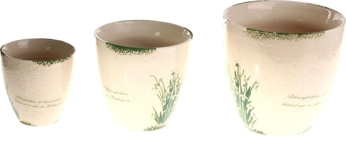 Набор кашпо Ландыши, 3 предмета829945Размеры: 11 х 11 см, 14 х 14 см, 17 х 17 см.Комнатные растения — всеобщие любимцы. Они радуют глаз, насыщают помещение кислородом и украшают пространство. Каждому из растений необходим свой удобный и красивый дом. Кашпо из керамики прекрасно подходят для высадки растений: за счёт пластичности глины и разных способов обработки существует великое множество форм и дизайновпористый материал позволяет испаряться лишней влагевоздух, необходимый для дыхания корней, проникает сквозь керамические стенки. Набор кашпо 3 шт. Ландыши позаботится о зелёном питомце, освежит интерьер и подчеркнёт его стиль. Добавьте помещению уют.