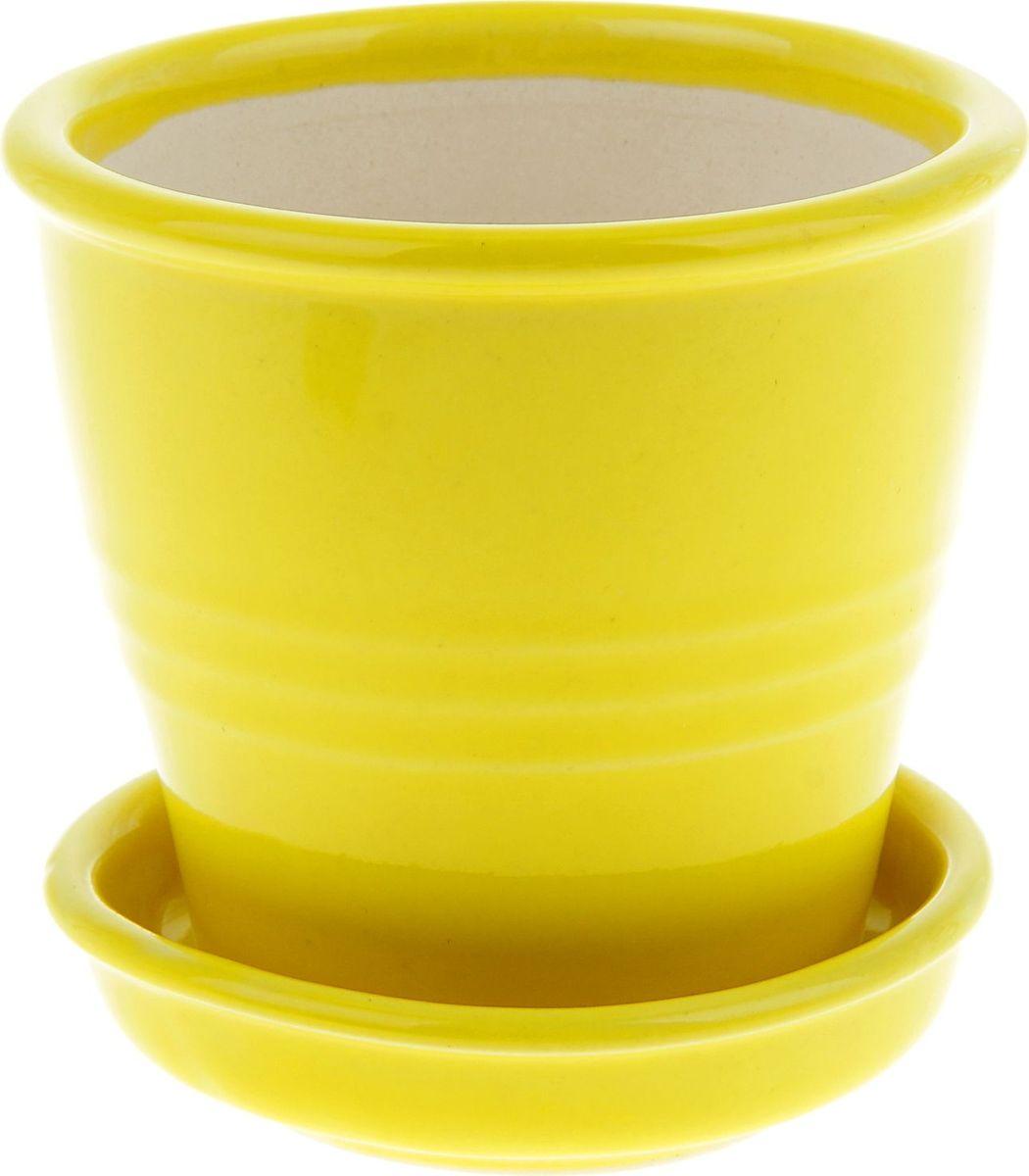 Кашпо Керамика ручной работы Классик, цвет: желтый, 0,23 л835546Комнатные растения — всеобщие любимцы. Они радуют глаз, насыщают помещение кислородом и украшают пространство. Каждому из них необходим свой удобный и красивый дом. Кашпо из керамики прекрасно подходят для высадки растений: за счет пластичности глины и разных способов обработки существует великое множество форм и дизайнов пористый материал позволяет испаряться лишней влаге воздух, необходимый для дыхания корней, проникает сквозь керамические стенки! позаботится о зеленом питомце, освежит интерьер и подчеркнет его стиль.