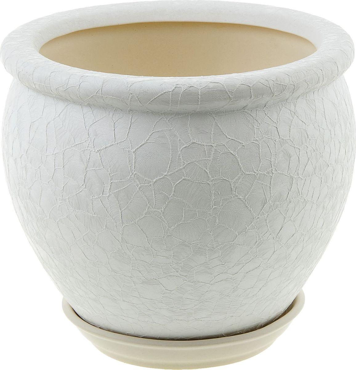 Кашпо Керамика ручной работы Вьетнам, цвет: белый, 5 л835660Комнатные растения — всеобщие любимцы. Они радуют глаз, насыщают помещение кислородом и украшают пространство. Каждому из них необходим свой удобный и красивый дом. Кашпо из керамики прекрасно подходят для высадки растений: за счёт пластичности глины и разных способов обработки существует великое множество форм и дизайновпористый материал позволяет испаряться лишней влагевоздух, необходимый для дыхания корней, проникает сквозь керамические стенки! #name# позаботится о зелёном питомце, освежит интерьер и подчеркнёт его стиль.