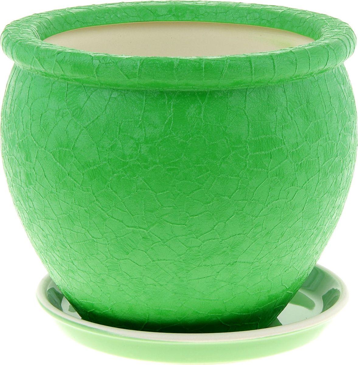 Кашпо Керамика ручной работы Вьетнам, цвет: зеленый, 5 л835661Комнатные растения — всеобщие любимцы. Они радуют глаз, насыщают помещение кислородом и украшают пространство. Каждому из них необходим свой удобный и красивый дом. Кашпо из керамики прекрасно подходят для высадки растений: за счет пластичности глины и разных способов обработки существует великое множество форм и дизайнов пористый материал позволяет испаряться лишней влаге воздух, необходимый для дыхания корней, проникает сквозь керамические стенки! позаботится о зеленом питомце, освежит интерьер и подчеркнет его стиль.