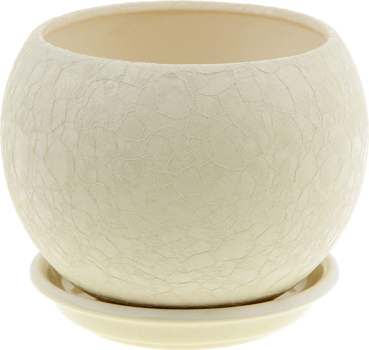 Кашпо Керамика ручной работы Шар, цвет: бежевый, 1,4 л835699Комнатные растения — всеобщие любимцы. Они радуют глаз, насыщают помещение кислородом и украшают пространство. Каждому из них необходим свой удобный и красивый дом. Кашпо из керамики прекрасно подходят для высадки растений: за счёт пластичности глины и разных способов обработки существует великое множество форм и дизайновпористый материал позволяет испаряться лишней влагевоздух, необходимый для дыхания корней, проникает сквозь керамические стенки! #name# позаботится о зелёном питомце, освежит интерьер и подчеркнёт его стиль.