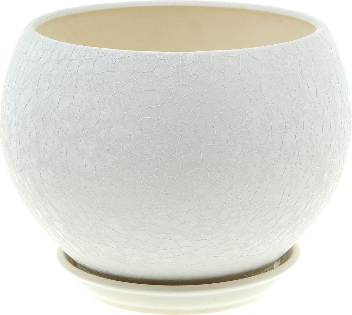 Кашпо Керамика ручной работы Шар, цвет: белый, 4,1 л835707Комнатные растения - всеобщие любимцы. Они радуют глаз, насыщают помещение кислородом и украшают пространство. Каждому из них необходим свой удобный и красивый дом.Кашпо из керамики прекрасно подходит для высадки растений:за счёт пластичности глины и разных способов обработки существует великое множество форм и дизайнов; пористый материал позволяет испаряться лишней влаге; воздух, необходимый для дыхания корней, проникает сквозь керамические стенки.Кашпо для цветов освежит интерьер и подчеркнёт его стиль.