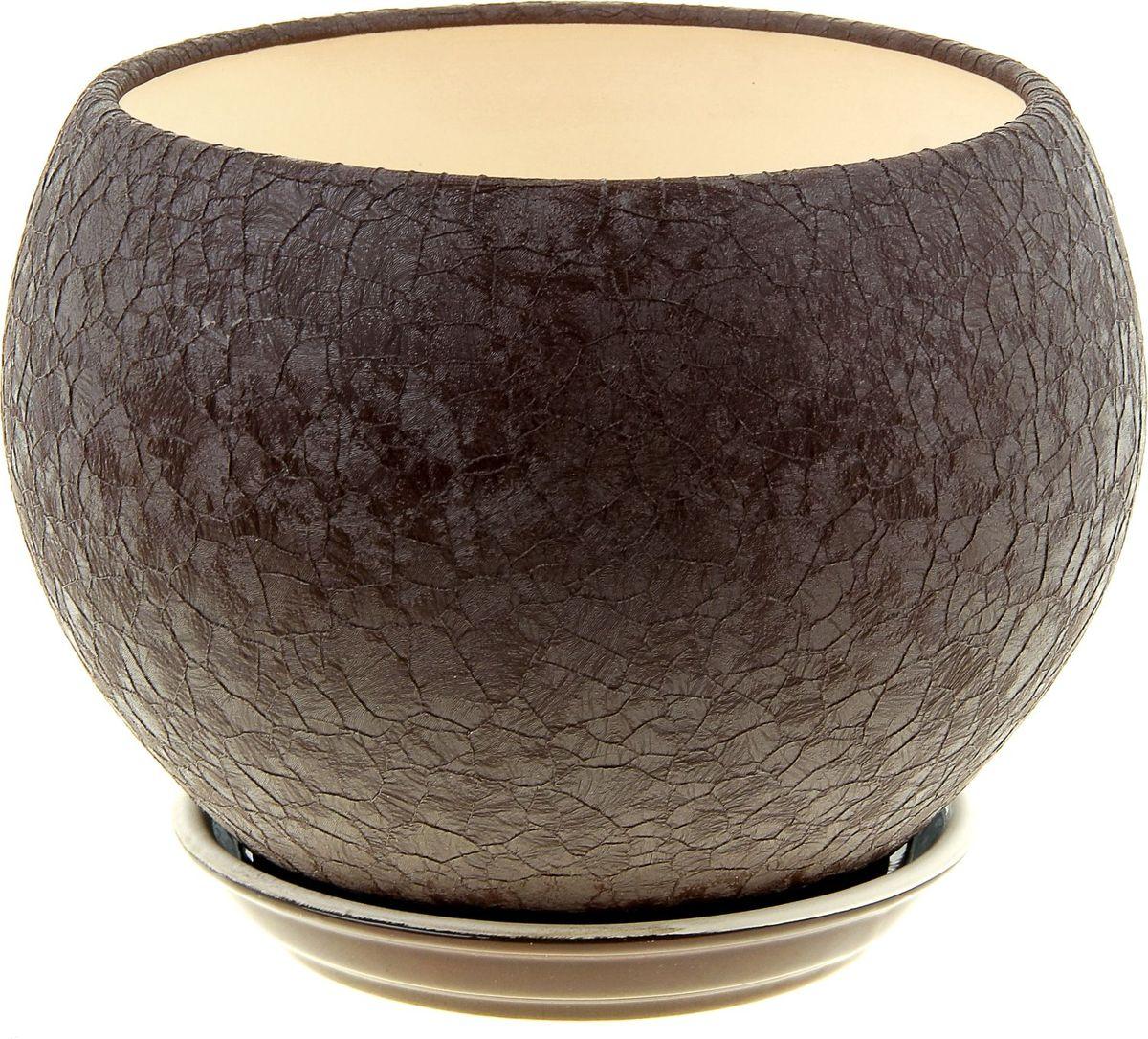 Кашпо Керамика ручной работы Шар, цвет: шоколадный, 4,1 л835712Комнатные растения — всеобщие любимцы. Они радуют глаз, насыщают помещение кислородом и украшают пространство. Каждому из них необходим свой удобный и красивый дом. Кашпо из керамики прекрасно подходят для высадки растений: за счет пластичности глины и разных способов обработки существует великое множество форм и дизайнов пористый материал позволяет испаряться лишней влаге воздух, необходимый для дыхания корней, проникает сквозь керамические стенки! позаботится о зеленом питомце, освежит интерьер и подчеркнет его стиль.