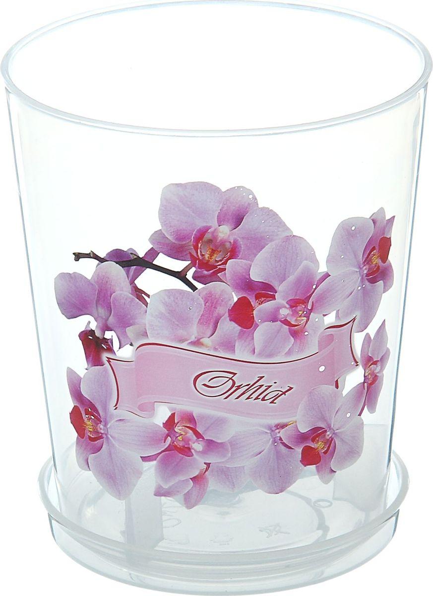 Горшок Альтернатива, для орхидеи, с поддоном, 0,7 л868034Любой, даже самый современный и продуманный интерьер будет не завершённым без растений. Они не только очищают воздух и насыщают его кислородом, но и заметно украшают окружающее пространство. Такому полезному &laquo члену семьи&raquoпросто необходимо красивое и функциональное кашпо, оригинальный горшок или необычная ваза! Мы предлагаем - Горшок для орхидеи 0,7 л, поддон!Оптимальный выбор материала &mdash &nbsp пластмасса! Почему мы так считаем? Малый вес. С лёгкостью переносите горшки и кашпо с места на место, ставьте их на столики или полки, подвешивайте под потолок, не беспокоясь о нагрузке. Простота ухода. Пластиковые изделия не нуждаются в специальных условиях хранения. Их&nbsp легко чистить &mdashдостаточно просто сполоснуть тёплой водой. Никаких царапин. Пластиковые кашпо не царапают и не загрязняют поверхности, на которых стоят. Пластик дольше хранит влагу, а значит &mdashрастение реже нуждается в поливе. Пластмасса не пропускает воздух &mdashкорневой системе растения не грозят резкие перепады температур. Огромный выбор форм, декора и расцветок &mdashвы без труда подберёте что-то, что идеально впишется в уже существующий интерьер.Соблюдая нехитрые правила ухода, вы можете заметно продлить срок службы горшков, вазонов и кашпо из пластика: всегда учитывайте размер кроны и корневой системы растения (при разрастании большое растение способно повредить маленький горшок)берегите изделие от воздействия прямых солнечных лучей, чтобы кашпо и горшки не выцветалидержите кашпо и горшки из пластика подальше от нагревающихся поверхностей.Создавайте прекрасные цветочные композиции, выращивайте рассаду или необычные растения, а низкие цены позволят вам не ограничивать себя в выборе.