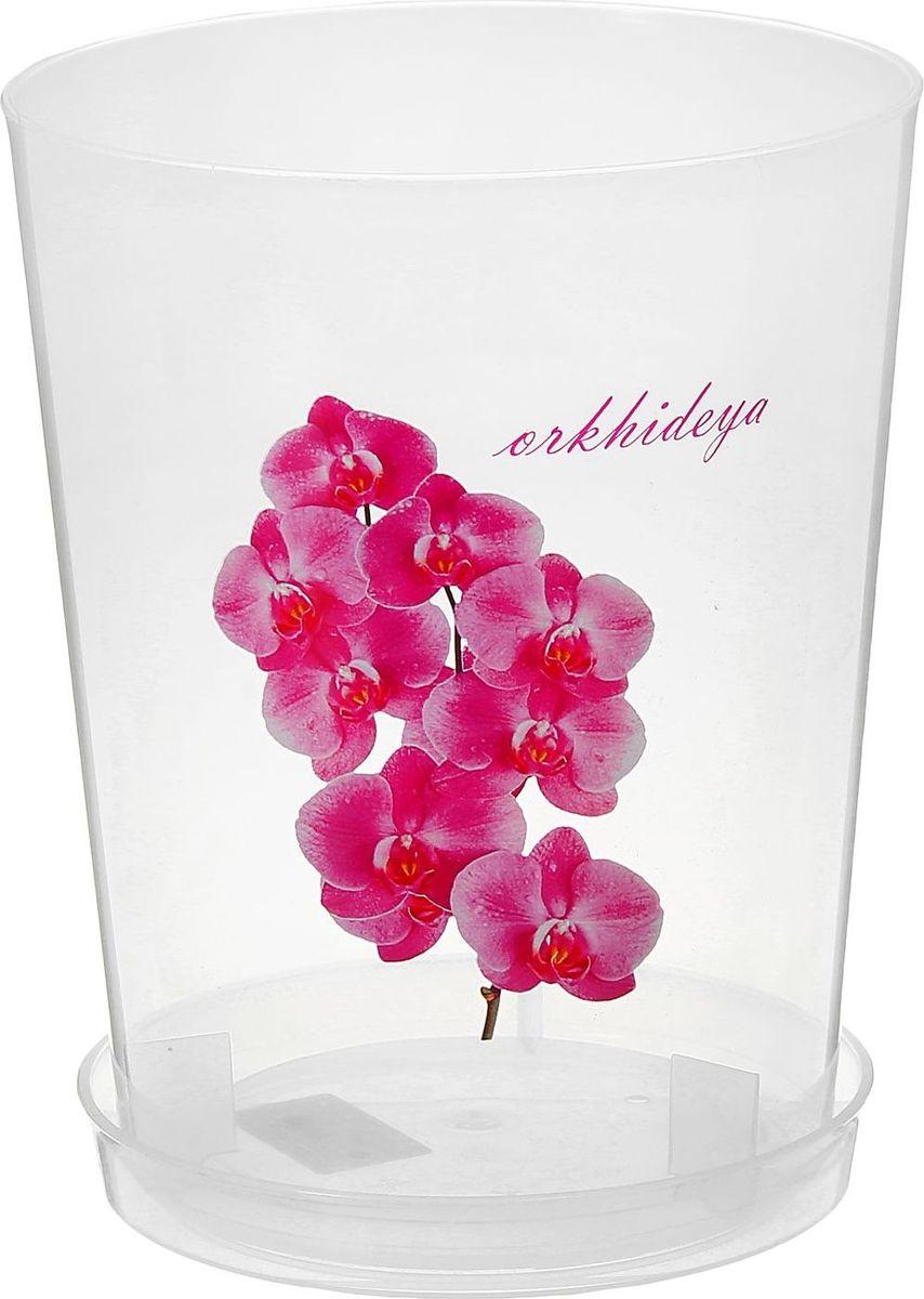 Горшок Альтернатива, для орхидеи, цвет: прозрачный, 3,5 л875109Любой, даже самый современный и продуманный интерьер будет не завершённым без растений. Они не только очищают воздух и насыщают его кислородом, но и заметно украшают окружающее пространство. Такому полезному &laquo члену семьи&raquoпросто необходимо красивое и функциональное кашпо, оригинальный горшок или необычная ваза! Мы предлагаем - Горшок для орхидеи 3,5 л, прозрачный!Оптимальный выбор материала &mdash &nbsp пластмасса! Почему мы так считаем? Малый вес. С лёгкостью переносите горшки и кашпо с места на место, ставьте их на столики или полки, подвешивайте под потолок, не беспокоясь о нагрузке. Простота ухода. Пластиковые изделия не нуждаются в специальных условиях хранения. Их&nbsp легко чистить &mdashдостаточно просто сполоснуть тёплой водой. Никаких царапин. Пластиковые кашпо не царапают и не загрязняют поверхности, на которых стоят. Пластик дольше хранит влагу, а значит &mdashрастение реже нуждается в поливе. Пластмасса не пропускает воздух &mdashкорневой системе растения не грозят резкие перепады температур. Огромный выбор форм, декора и расцветок &mdashвы без труда подберёте что-то, что идеально впишется в уже существующий интерьер.Соблюдая нехитрые правила ухода, вы можете заметно продлить срок службы горшков, вазонов и кашпо из пластика: всегда учитывайте размер кроны и корневой системы растения (при разрастании большое растение способно повредить маленький горшок)берегите изделие от воздействия прямых солнечных лучей, чтобы кашпо и горшки не выцветалидержите кашпо и горшки из пластика подальше от нагревающихся поверхностей.Создавайте прекрасные цветочные композиции, выращивайте рассаду или необычные растения, а низкие цены позволят вам не ограничивать себя в выборе.
