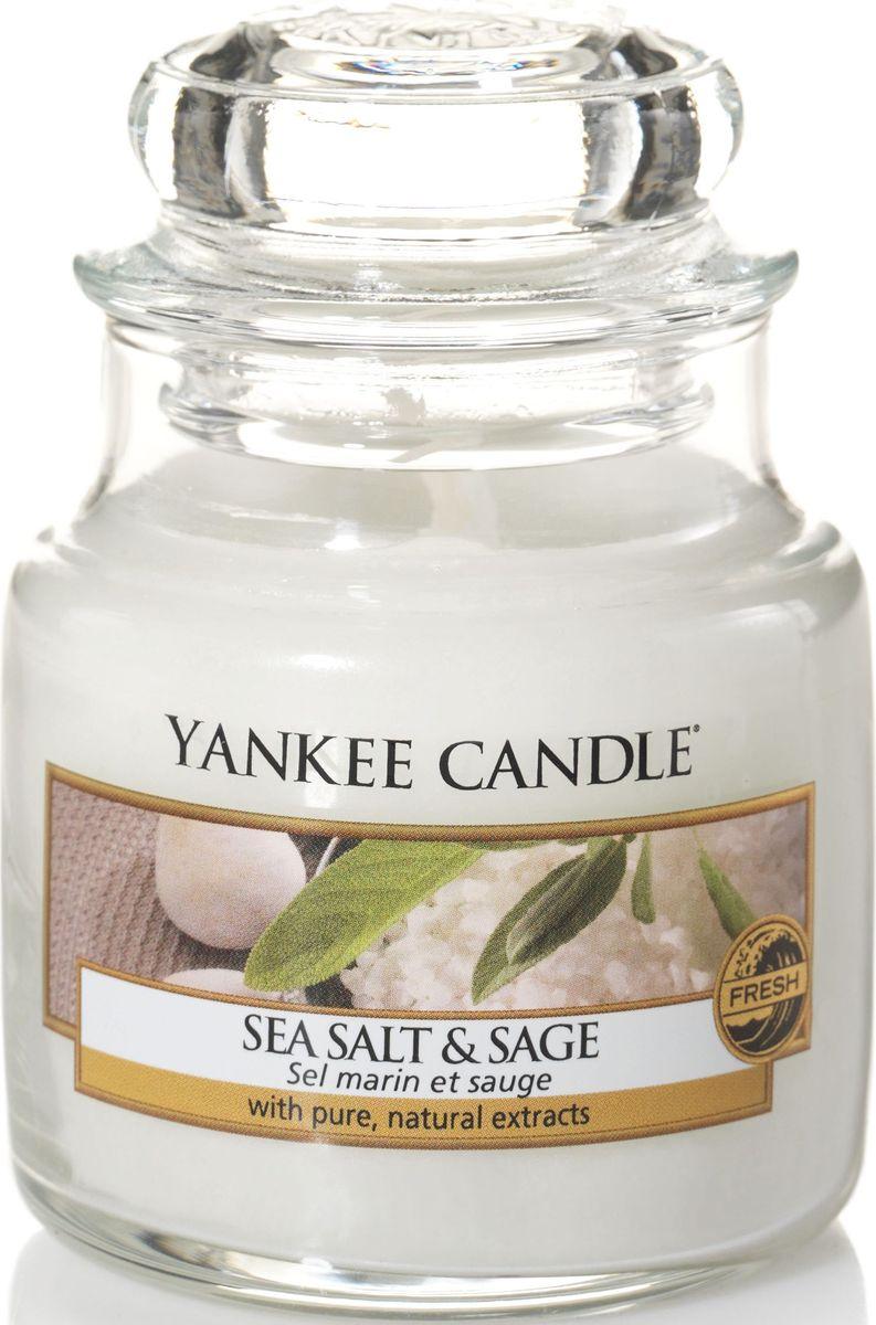 Ароматическая свеча Yankee Candle Морская соль и шалфей / Sea Salt & Sage, 25-45 ч1507712EАроматическая свеча Yankee Candle не только окутает вас волшебным ароматом, но еще и прекрасно впишется в интерьер. Использовать изделие можно как в доме, так и на веранде или в саду. Свеча в стеклянной банке с крышкой выполнена из высокоочищенного парафина с добавлением натуральных эфирных масел. Стекло делает горение свечи безопасным. Описание ароматической композиции: ароматическая свеча с ароматом теплого и манящего шалфея, смешанного с чистым, свежим ароматом морской соли. Верхняя нота: Морская соль, Бергамот. Средняя нота: Морская лаванда. Базовая нота: Белая амбра, Ветивер.