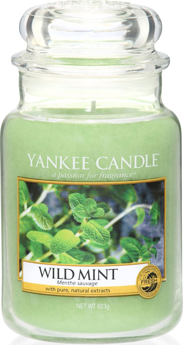 Ароматическая свеча Yankee Candle Дикая мята / Wild Mint, 110-150 ч ароматическая свеча yankee candle cuban mojito medium jar candle объем 411 г