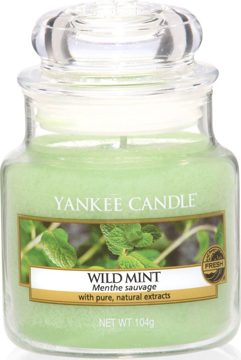 Ароматическая свеча Yankee Candle Дикая мята / Wild Mint, 25-45 ч1542820EАроматическая свеча Yankee Candle не только окутает вас волшебным ароматом, но еще и прекрасно впишется в интерьер. Использовать изделие можно как в доме, так и на веранде или в саду. Свеча в стеклянной банке с крышкой выполнена из высокоочищенного парафина с добавлением натуральных эфирных масел. Стекло делает горение свечи безопасным.Описание ароматической композиции: листья дикой мяты - свежий, прохладный, бодрящий аромат.Верхняя нота: Листья дикой мяты.Средняя нота: Свежая мята.Базовая нота: Мускус, Сандаловое дерево.