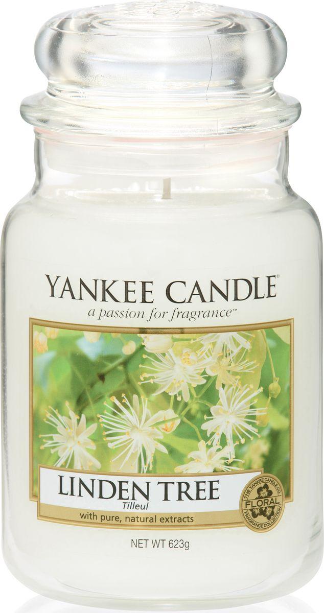 Ароматическая свеча Yankee Candle не только окутает вас волшебным ароматом, но еще и прекрасно впишется в интерьер. Использовать изделие можно как в доме, так и на веранде или в саду. Свеча в стеклянной банке с крышкой выполнена из высокоочищенного парафина с добавлением натуральных эфирных масел. Стекло делает горение свечи безопасным. Описание ароматической композиции: свежий аромат цветущей липы в солнечный тихий день. Верхняя нота: Листья хосты, Липовый цвет. Средняя нота: Калина. Базовая нота: Мускус, Кедр.