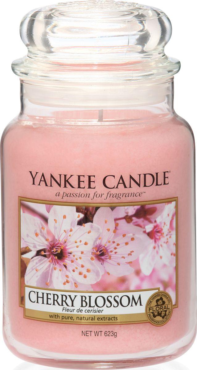 Ароматическая свеча Yankee Candle не только окутает вас волшебным ароматом, но еще и прекрасно впишется в интерьер. Использовать изделие можно как в доме, так и на веранде или в саду. Свеча в стеклянной банке с крышкой выполнена из высокоочищенного парафина с добавлением натуральных эфирных масел. Стекло делает горение свечи безопасным. Описание ароматической композиции: очаровательная и огромная охапка свежих цветов вишни превратит любую комнату в ароматный вишневый сад. Верхняя нота: Вишня. Средняя нота: Роза, Вишня, Жасмин. Базовая нота: Пудровый мускус, Сандаловое дерево.