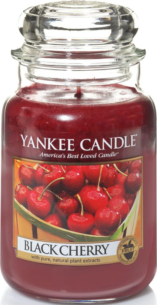 Ароматическая свеча Yankee Candle не только окутает вас волшебным ароматом, но еще и прекрасно впишется в интерьер. Использовать изделие можно как в доме, так и на веранде или в саду. Свеча в стеклянной банке с крышкой выполнена из высокоочищенного парафина с добавлением натуральных эфирных масел. Стекло делает горение свечи безопасным. Описание ароматической композиции: абсолютно вкусная сладость богатой, спелой черной вишни. Верхняя нота: Вишня, Миндаль. Средняя нота: Вишня, Корица. Базовая нота: Черешня.