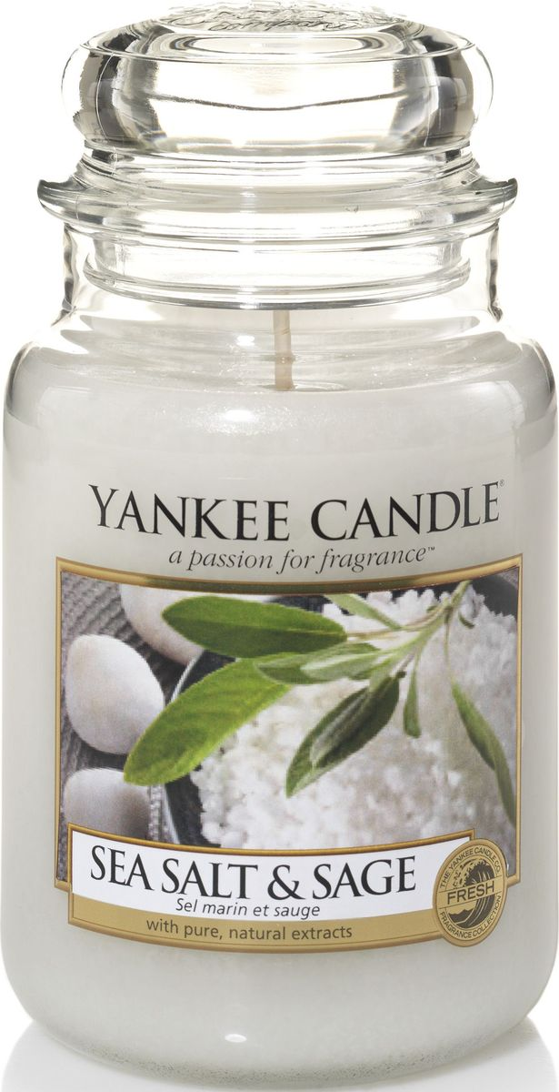 Ароматическая свеча Yankee Candle Морская соль и шалфей / Sea Salt & Sage, 110-150 ч1507710ЕАроматическая свеча Yankee Candle не только окутает вас волшебным ароматом, но еще и прекрасно впишется в интерьер. Использовать изделие можно как в доме, так и на веранде или в саду. Свеча в стеклянной банке с крышкой выполнена из высокоочищенного парафина с добавлением натуральных эфирных масел. Стекло делает горение свечи безопасным.Описание ароматической композиции: ароматическая свеча с ароматом теплого и манящего шалфея, смешанного с чистым, свежим ароматом морской соли.Верхняя нота: Морская соль, Бергамот.Средняя нота: Морская лаванда.Базовая нота: Белая амбра, Ветивер.