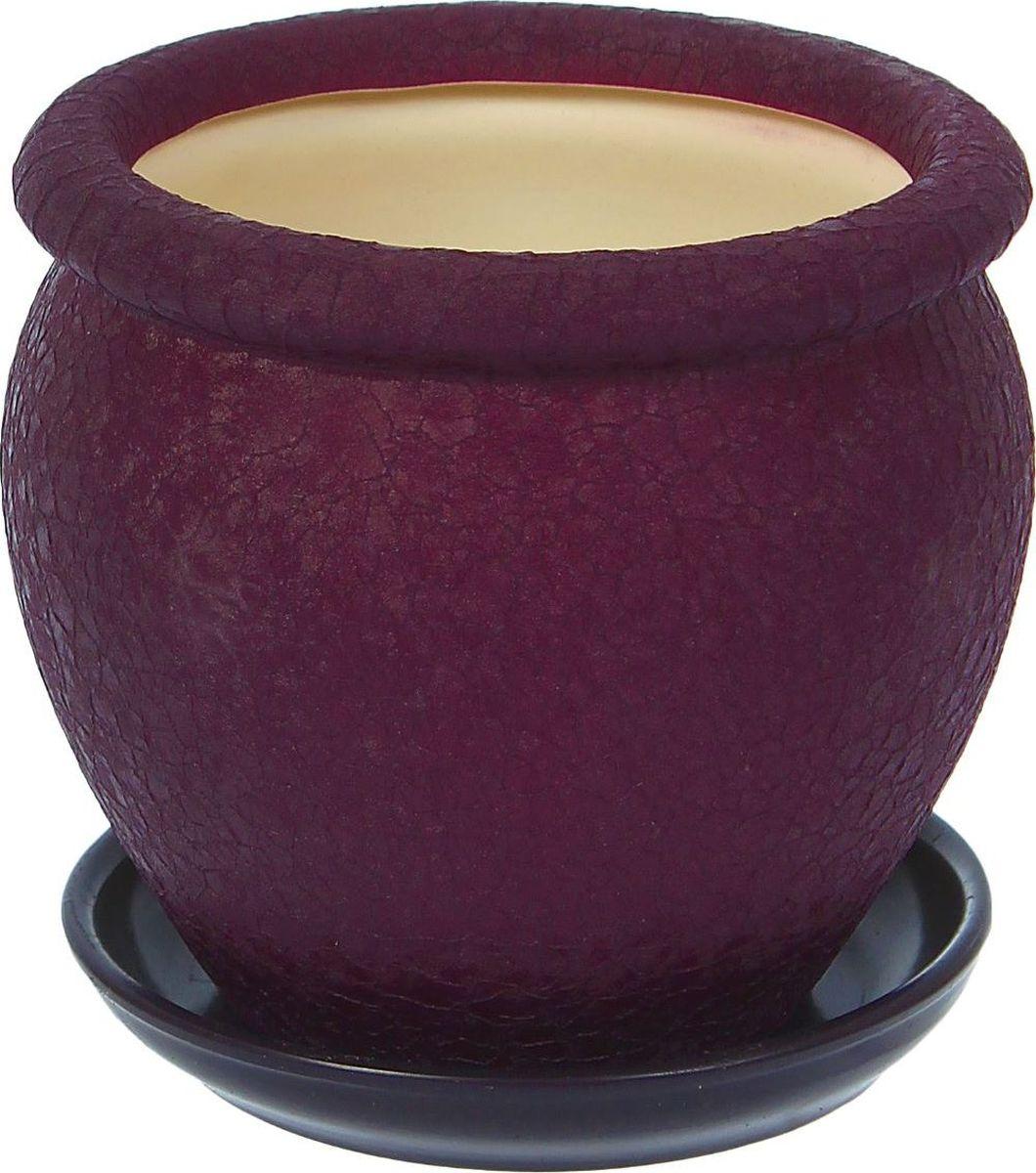 Кашпо Керамика ручной работы Вьетнам, цвет: фиолетовый, 1,5 л1099328Комнатные растения — всеобщие любимцы. Они радуют глаз, насыщают помещение кислородом и украшают пространство. Каждому из них необходим свой удобный и красивый дом. Кашпо из керамики прекрасно подходят для высадки растений: за счёт пластичности глины и разных способов обработки существует великое множество форм и дизайновпористый материал позволяет испаряться лишней влагевоздух, необходимый для дыхания корней, проникает сквозь керамические стенки! #name# позаботится о зелёном питомце, освежит интерьер и подчеркнёт его стиль.