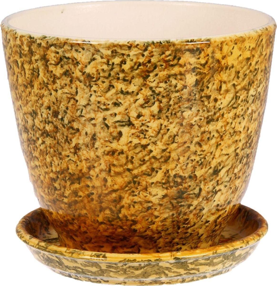 Кашпо Керамика ручной работы Кедр. Мрамор, 2,2 л1099339Комнатные растения — всеобщие любимцы. Они радуют глаз, насыщают помещение кислородом и украшают пространство. Каждому из них необходим свой удобный и красивый дом. Кашпо из керамики прекрасно подходят для высадки растений: за счёт пластичности глины и разных способов обработки существует великое множество форм и дизайновпористый материал позволяет испаряться лишней влагевоздух, необходимый для дыхания корней, проникает сквозь керамические стенки! #name# позаботится о зелёном питомце, освежит интерьер и подчеркнёт его стиль.