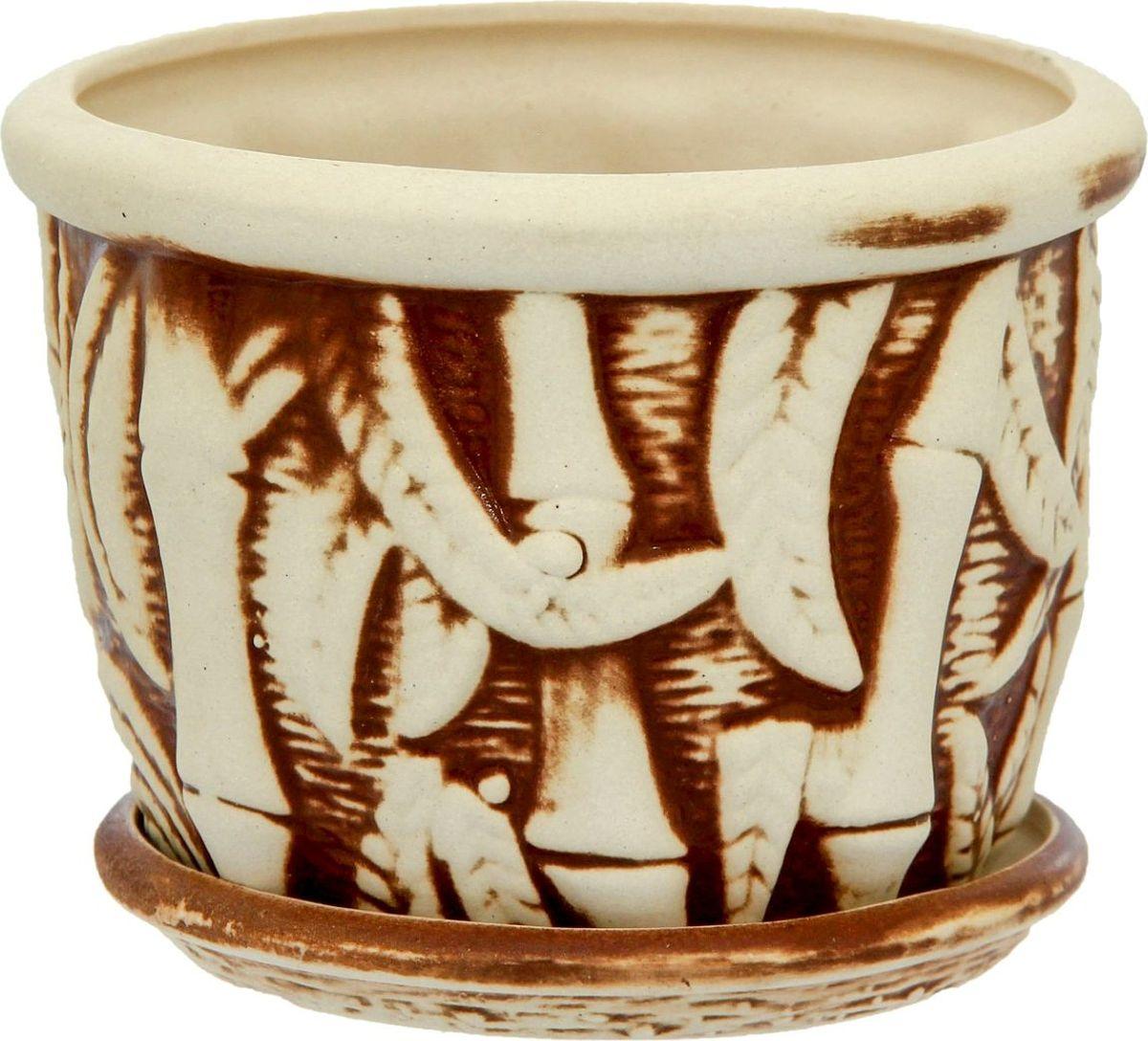 Кашпо Керамика ручной работы Бамбук, 1 л1114243Комнатные растения — всеобщие любимцы. Они радуют глаз, насыщают помещение кислородом и украшают пространство. Каждому из них необходим свой удобный и красивый дом. Кашпо из керамики прекрасно подходят для высадки растений: за счёт пластичности глины и разных способов обработки существует великое множество форм и дизайновпористый материал позволяет испаряться лишней влагевоздух, необходимый для дыхания корней, проникает сквозь керамические стенки! #name# позаботится о зелёном питомце, освежит интерьер и подчеркнёт его стиль.